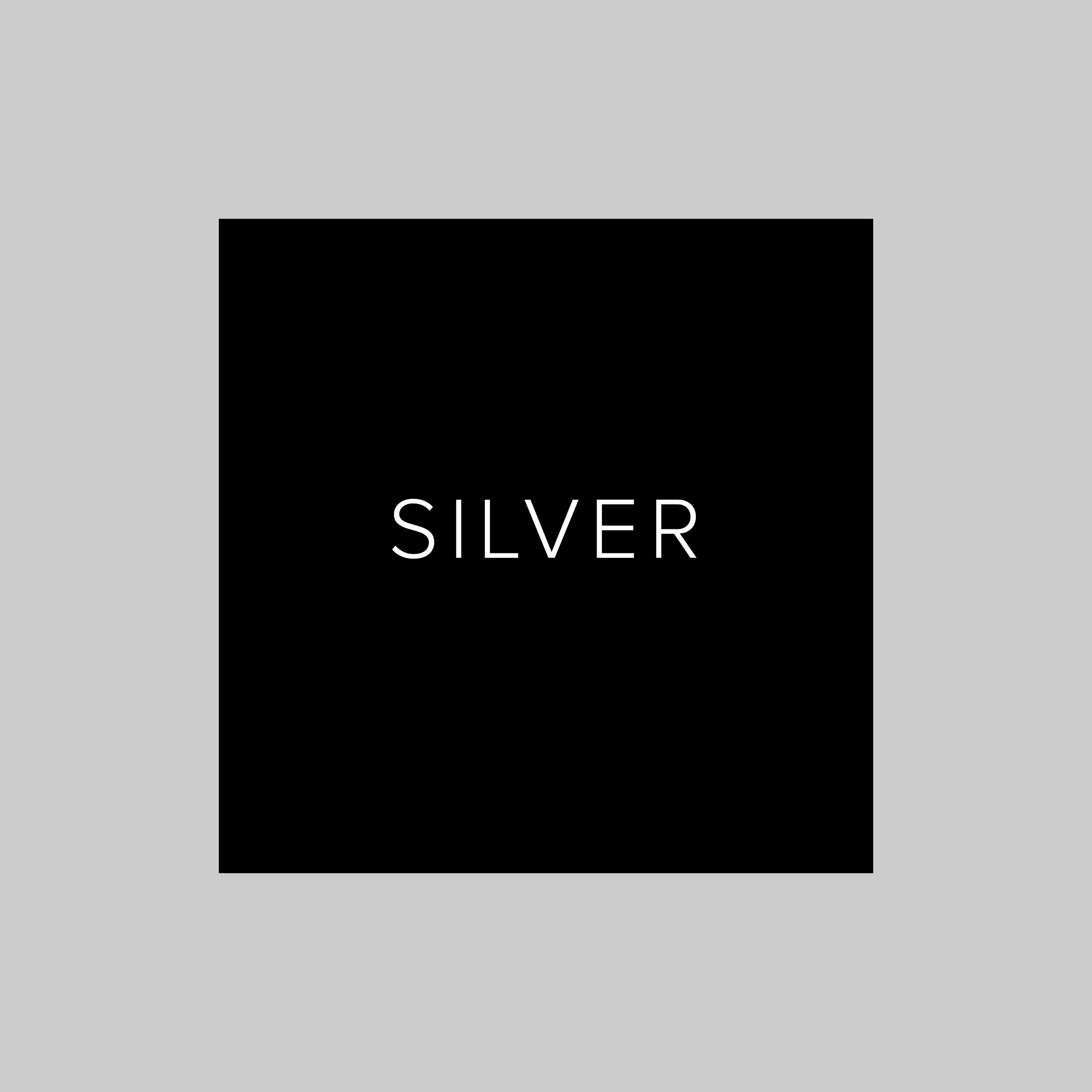 Sponsor_SLVR.png