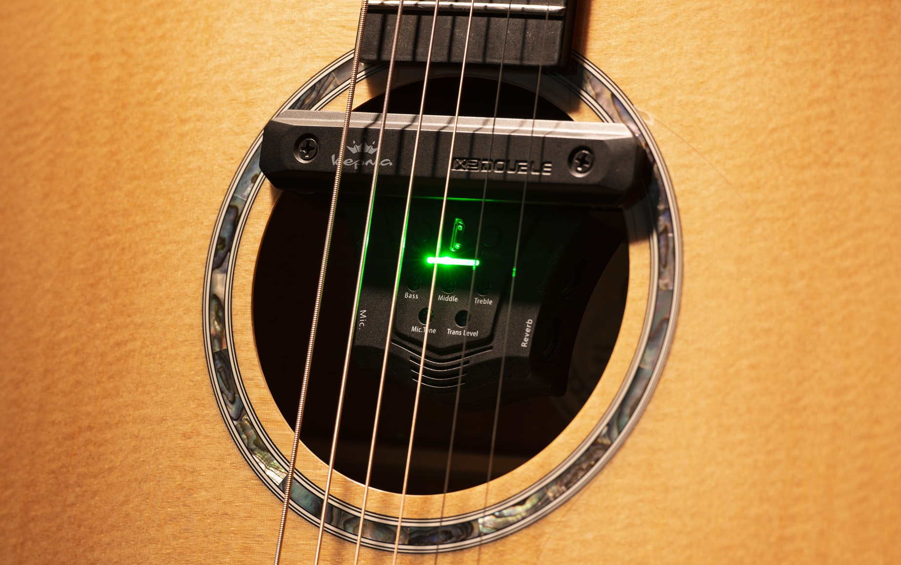 AcoustiFex™ GO Preamp and Effects system for all acoustic guitars