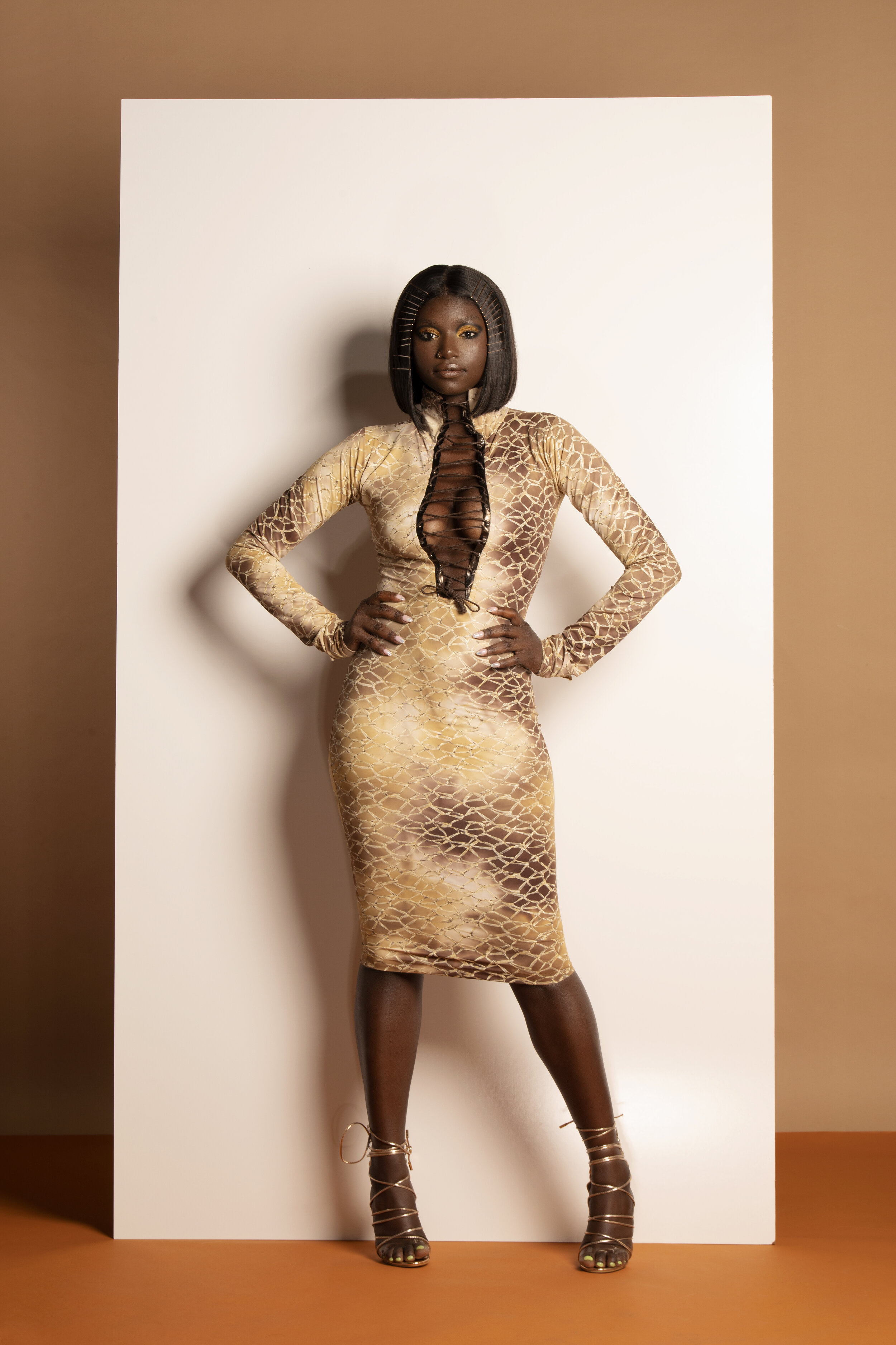 Barb Dress.jpg