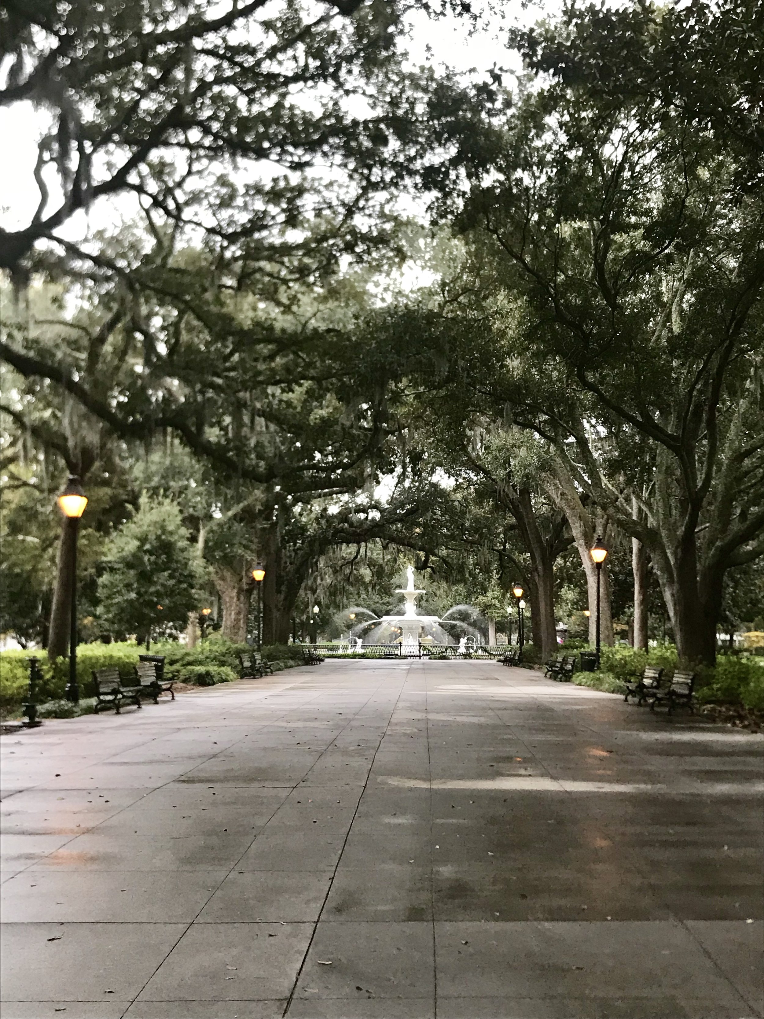 """Fun Facts - Oldest City in GA22 public squares, originally 24""""To Go"""" cups allowed in the downtown historic districtVery Pet Friendly (chew would have had a blast)"""