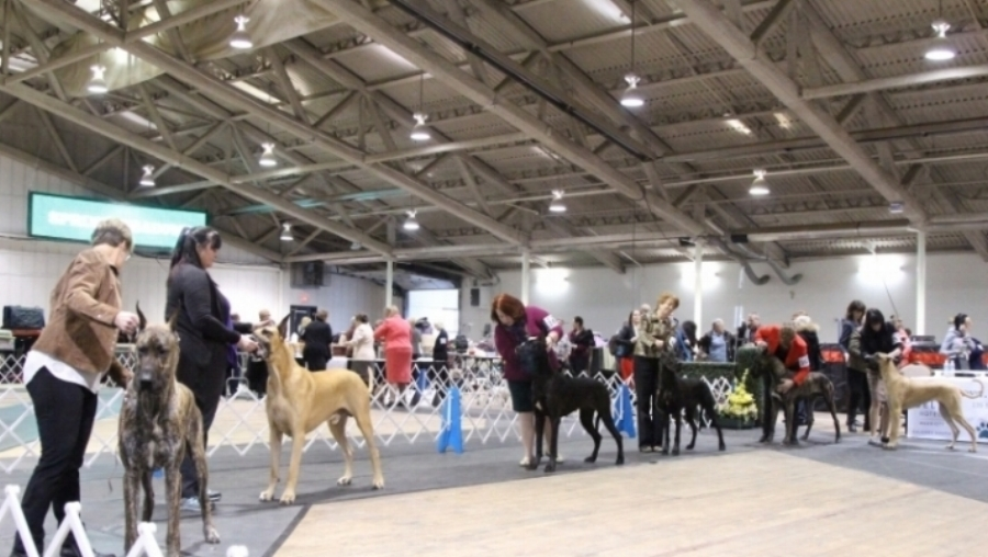 Alberta Kennel Club