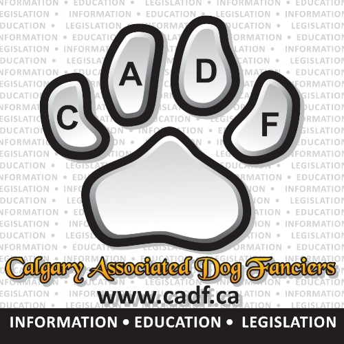cadf-banner-072513-1.jpg