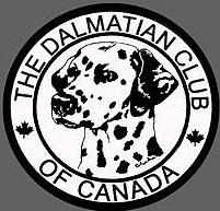 Dalmation Club.jpg