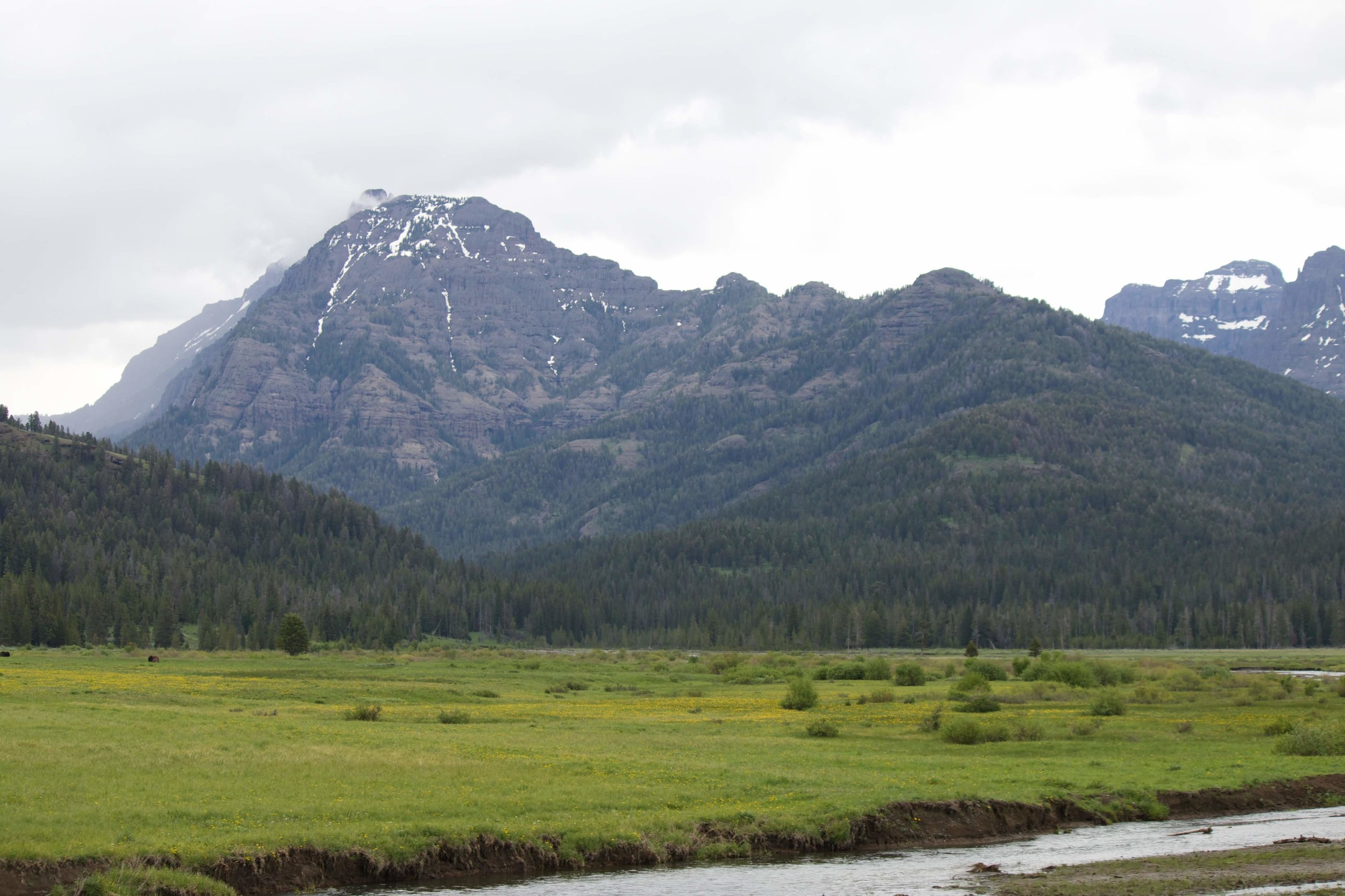 Yellowstone Park mountains