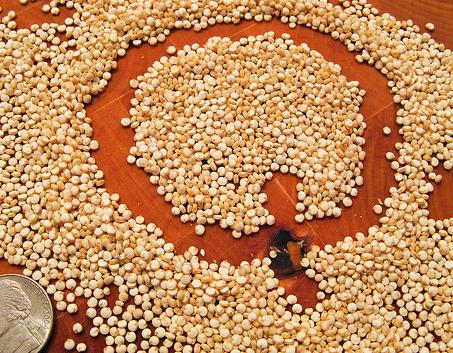 quinoa-seeds.png