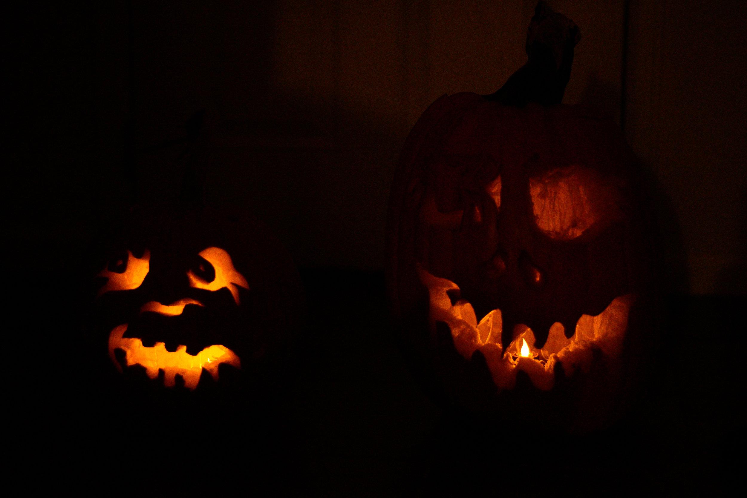 Pumpkin Carving & Deer Watching-13.jpg