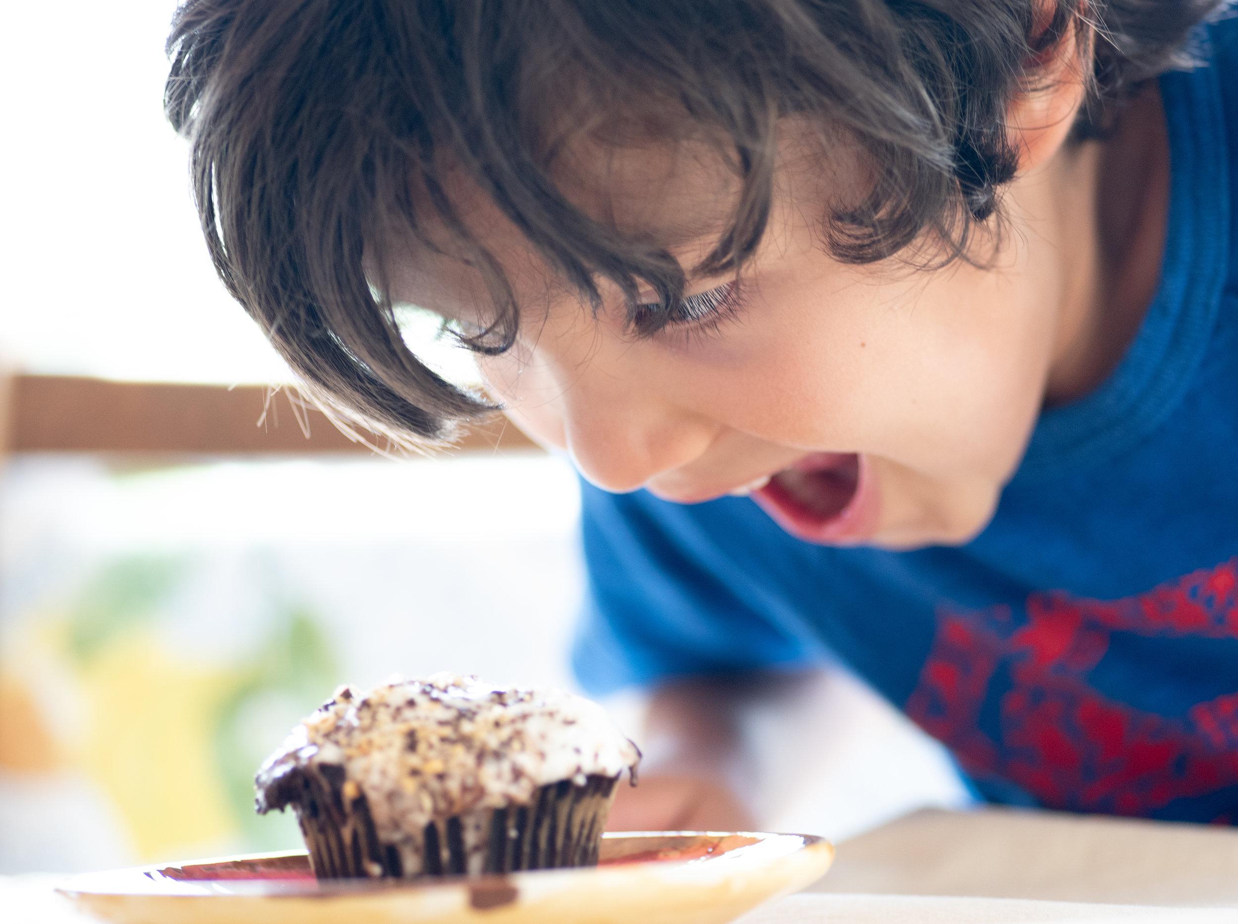 smores cupcakes4-1.jpg