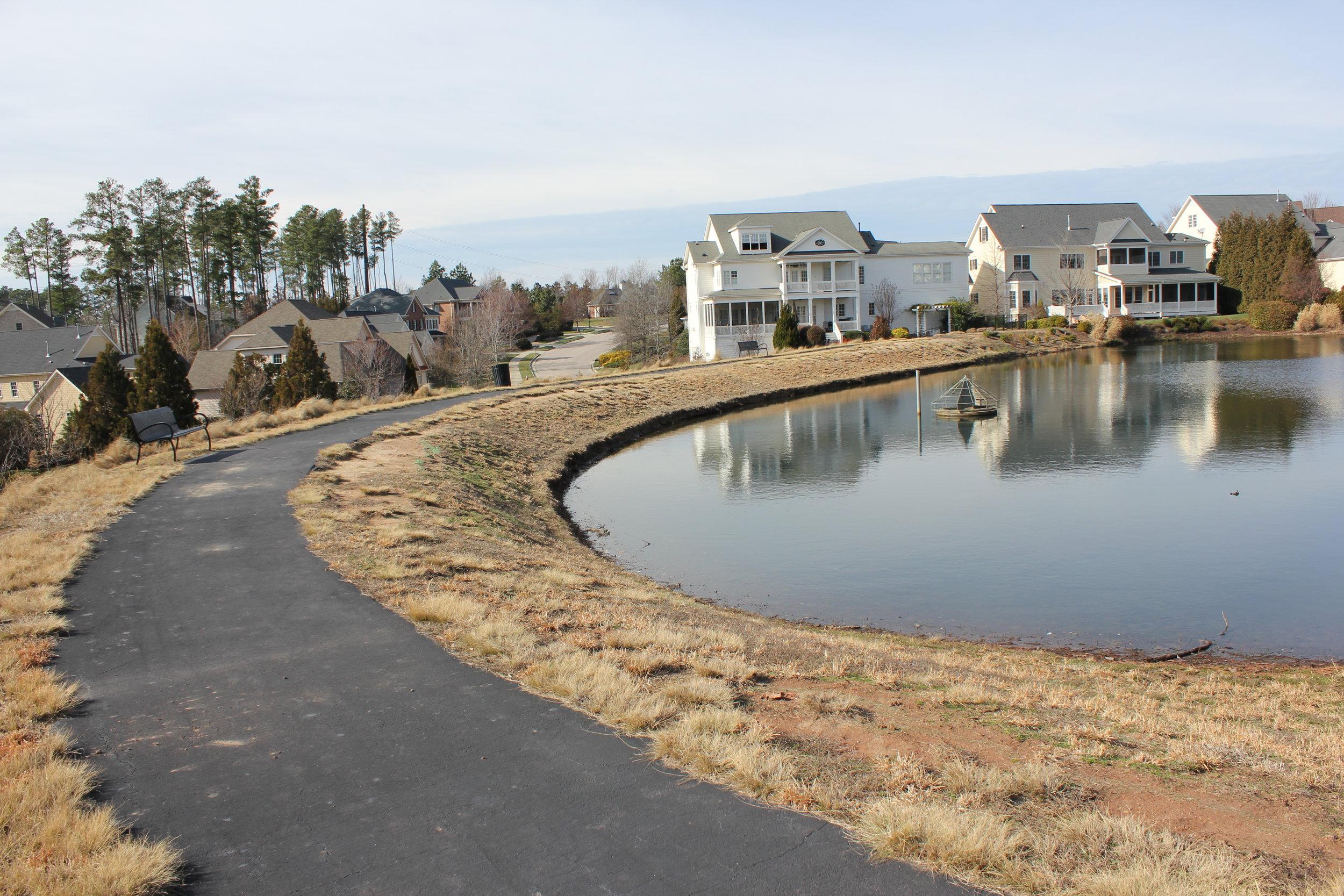 Cameron Pond Pond 2.JPG