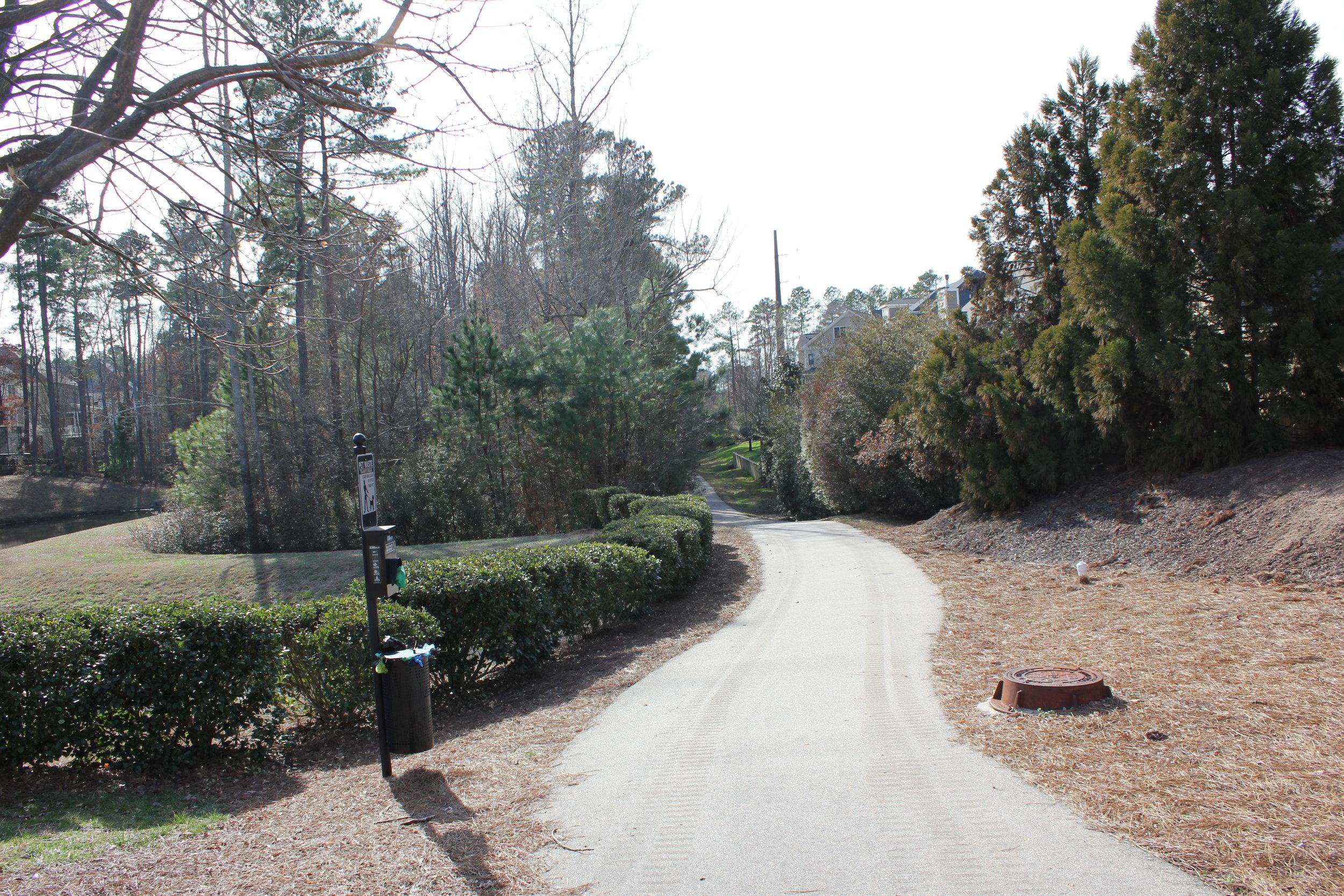 Cameron Pond Walking Trail 1.JPG