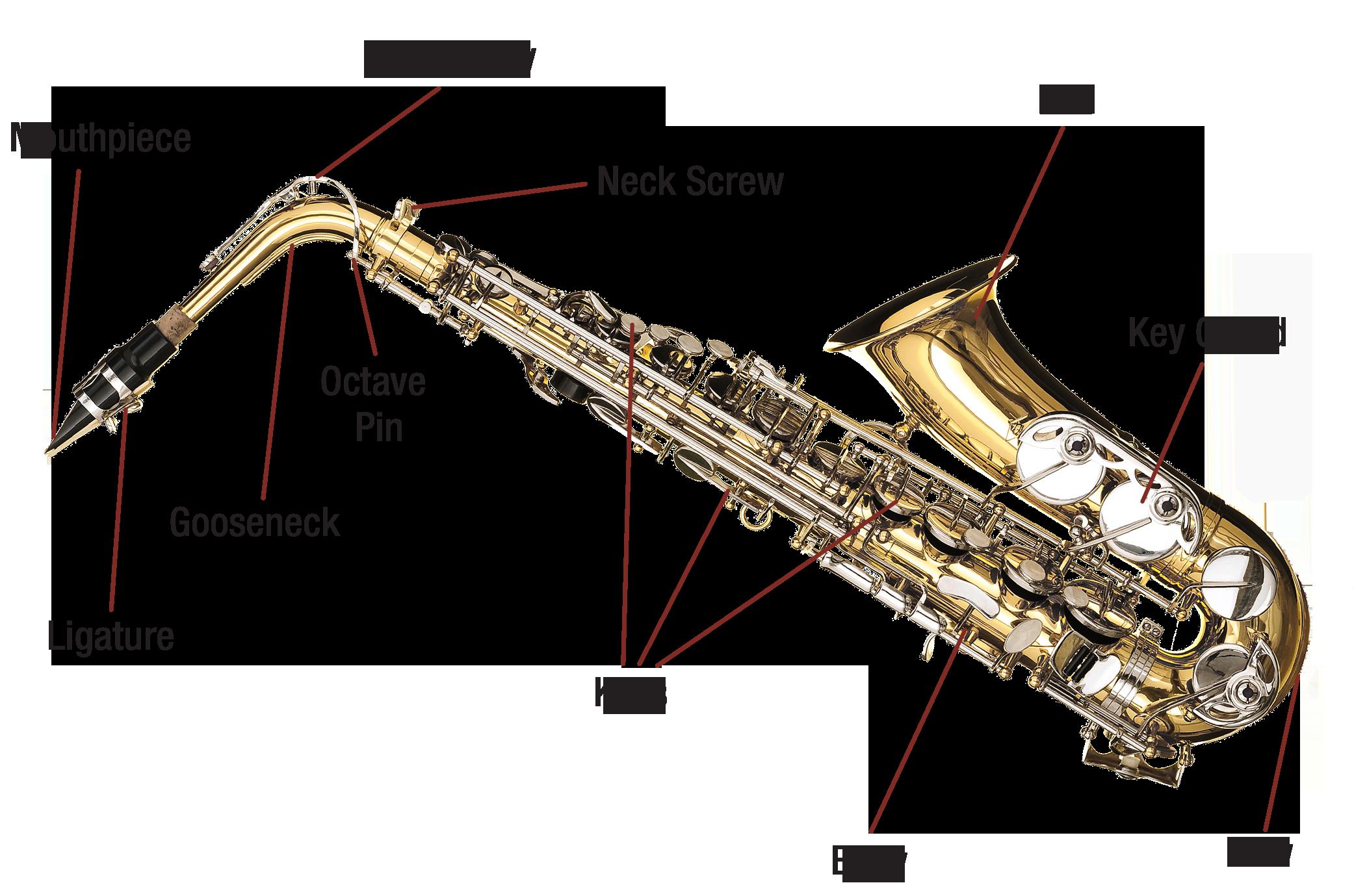 saxophone-diagram-image.png