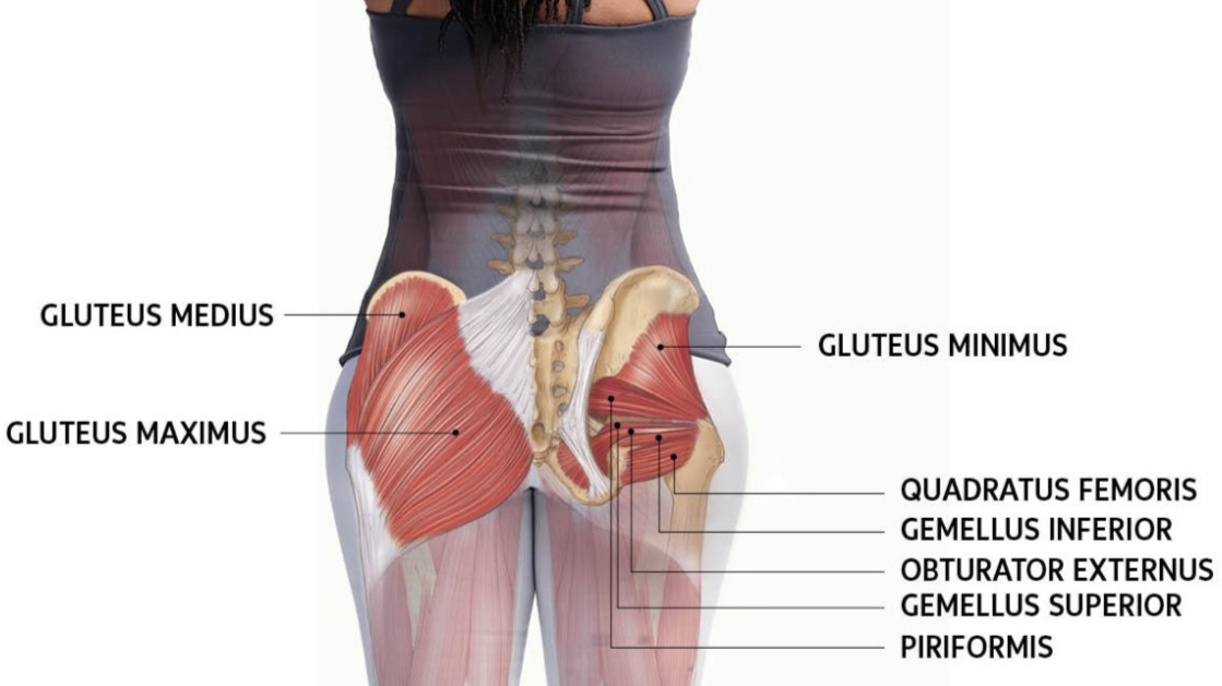 Step ups and hip thrusters - We believe the best way to train the glute muscles is to specifically isolate and target them. Aside from the aesthetic pursuit, strong hips and glutes are required to be a heavy hitter. In this fusion class of boxing and targeted backside work we will target the three glute groups for the strongest derrière.