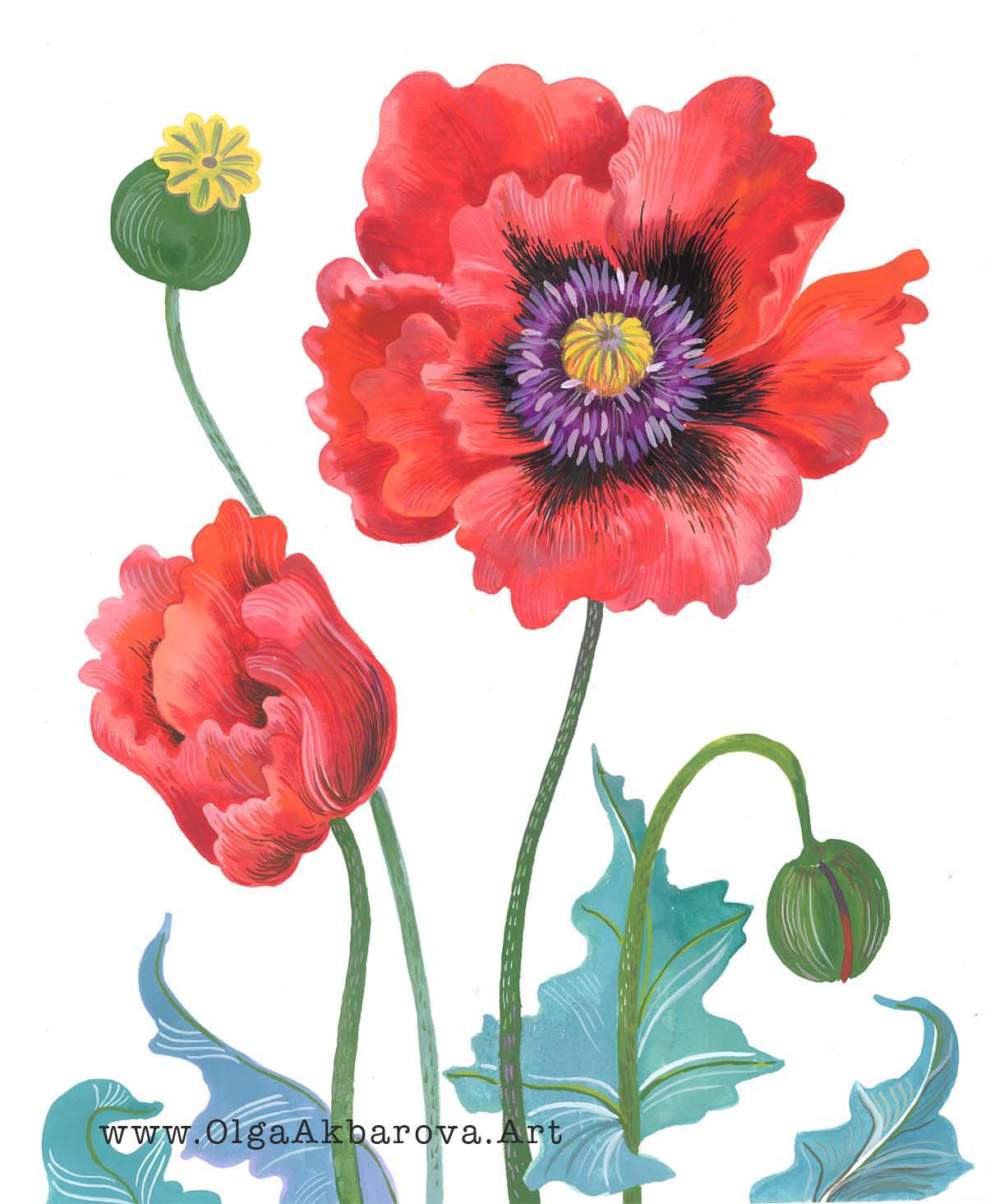 Poppies 72.jpg