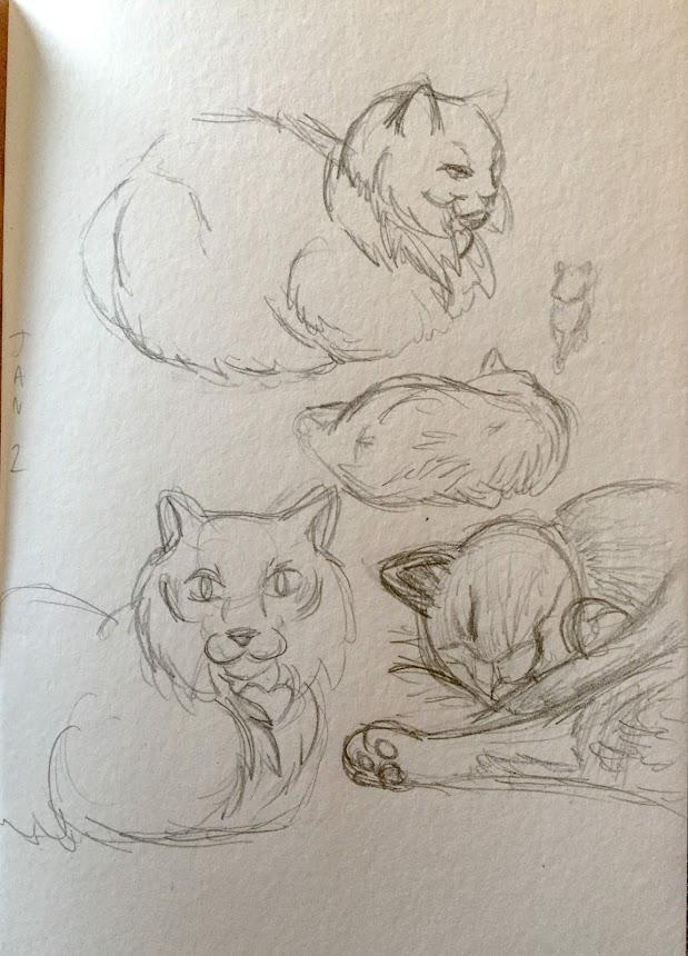 2018-01Jan-02 Kitty Sketches.JPG