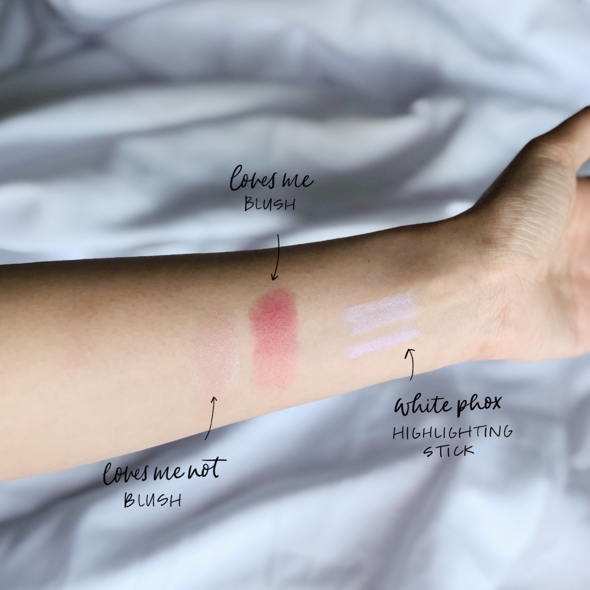 blush and highlighter swatch.JPG