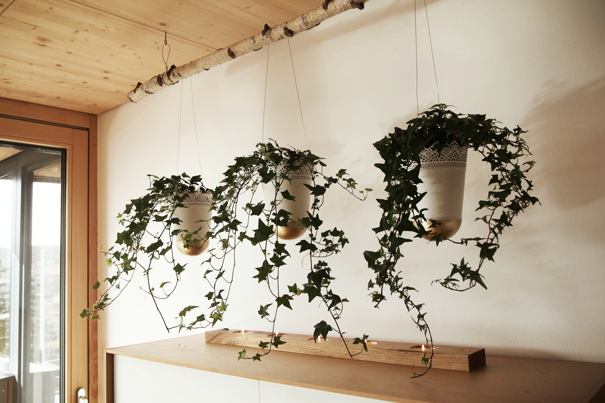 diy hanging planter on a wooden branch - easy, affordable, and simple.
