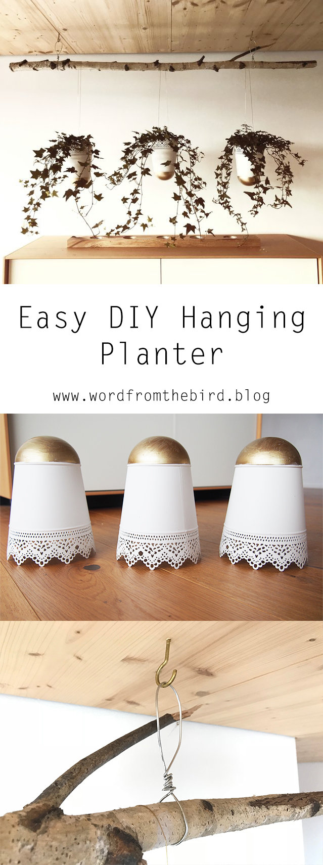 diy hanging planter.jpg