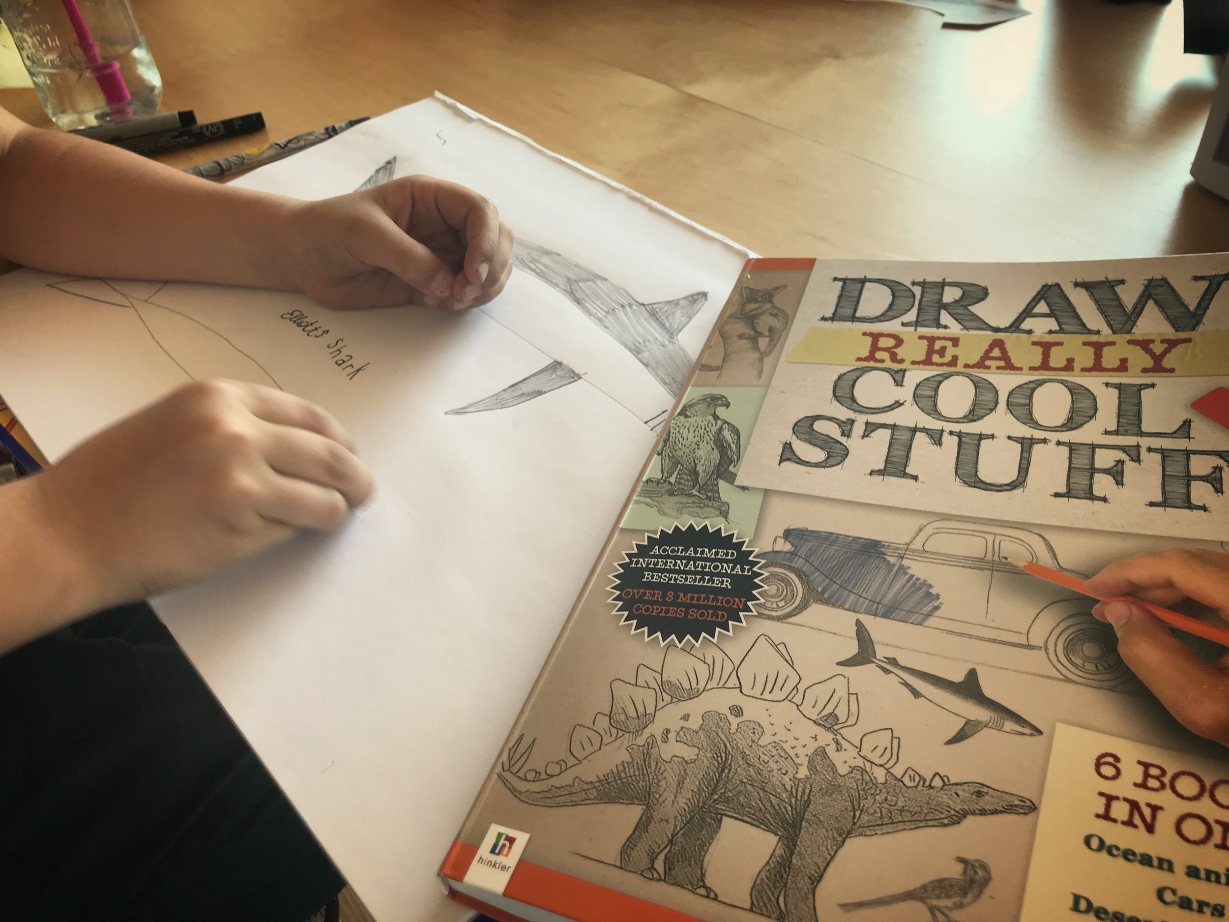 The most amazing book that will show your kids to draw the right way!