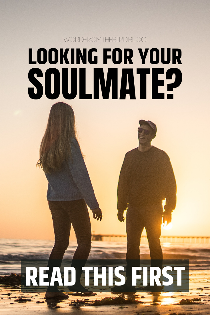 Are you looking for that perfect person to fill a void in your life? Before you do that, read why looking for your soulmate shouldn't be your objective, and what you can do instead. #relationshipadvcie #datingadvice #lovelife #marriagetips #soulmate #forwomen #relationship