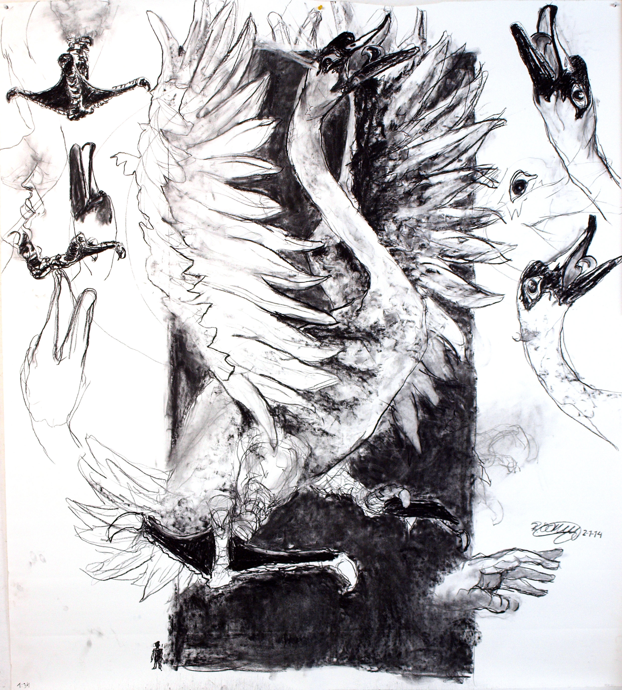 Sketch for Swan 171,5x150 cm charcoal on paper 2014