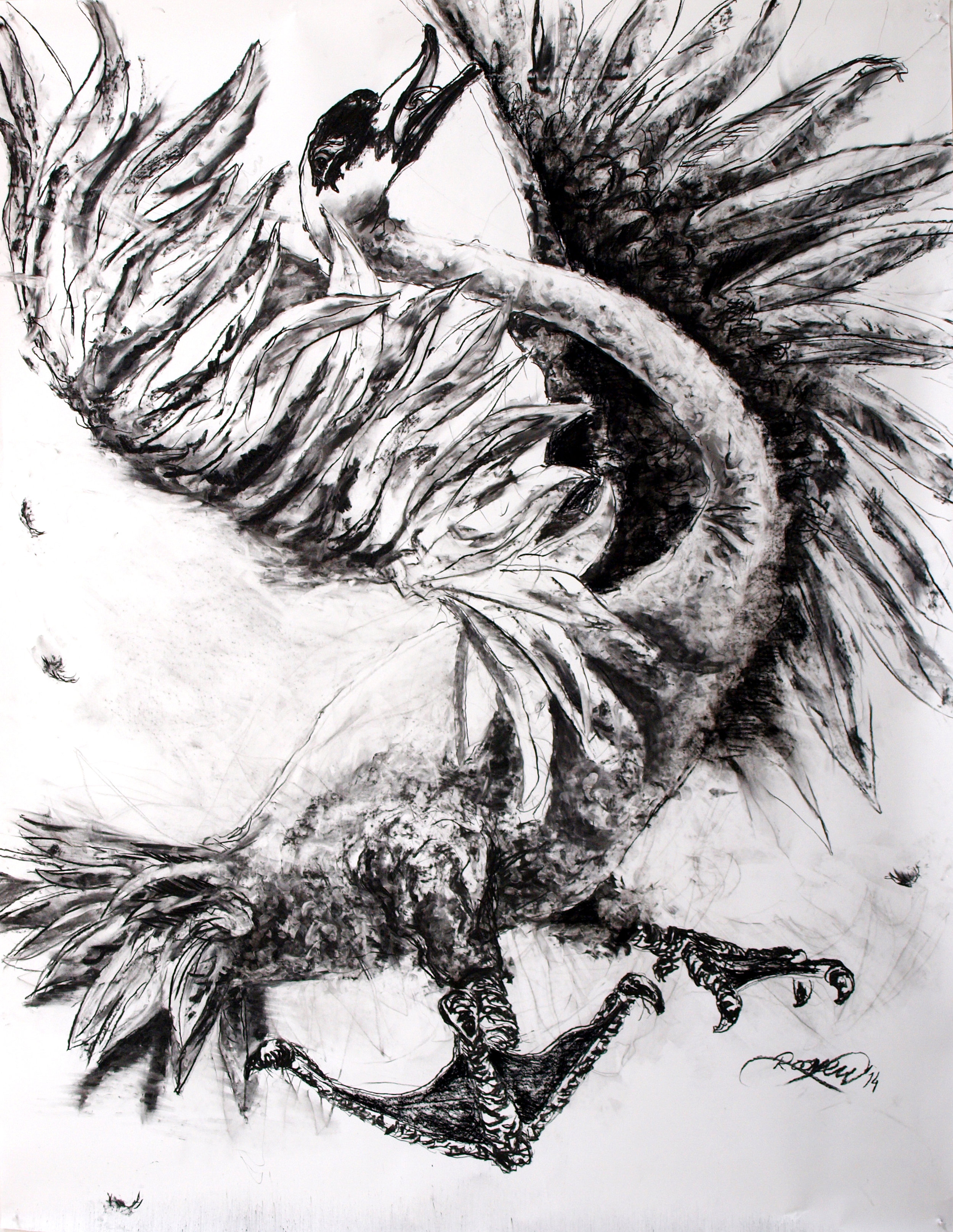 Sketch for Swan 193,5x150 cm charcoal on paper 2014