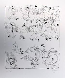 Swan silkscreen I 60x50 cm 380 gr/m acidfree paper