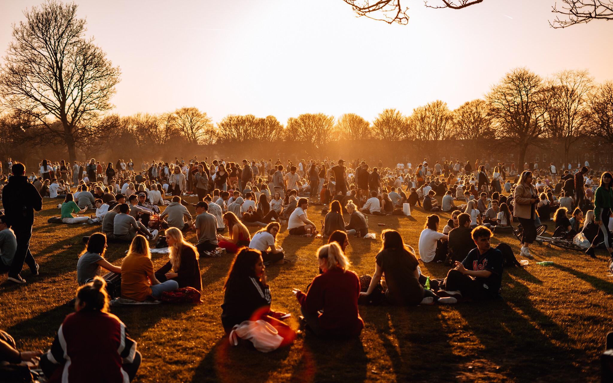 sunny park-3.jpg