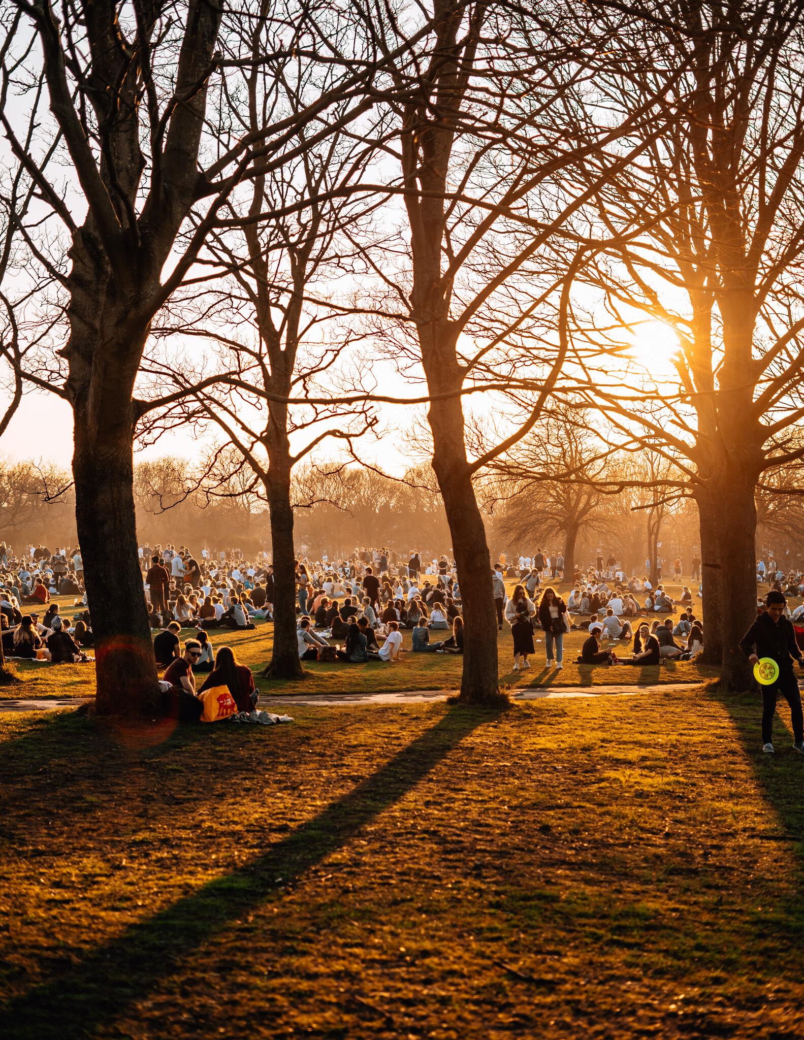 sunny park-2.jpg