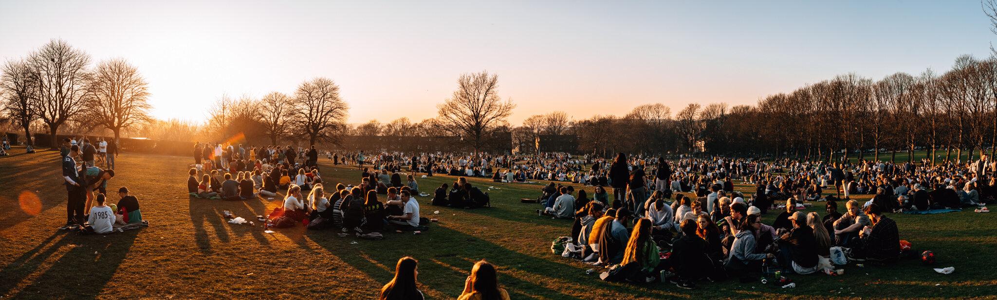sunny park-6.jpg