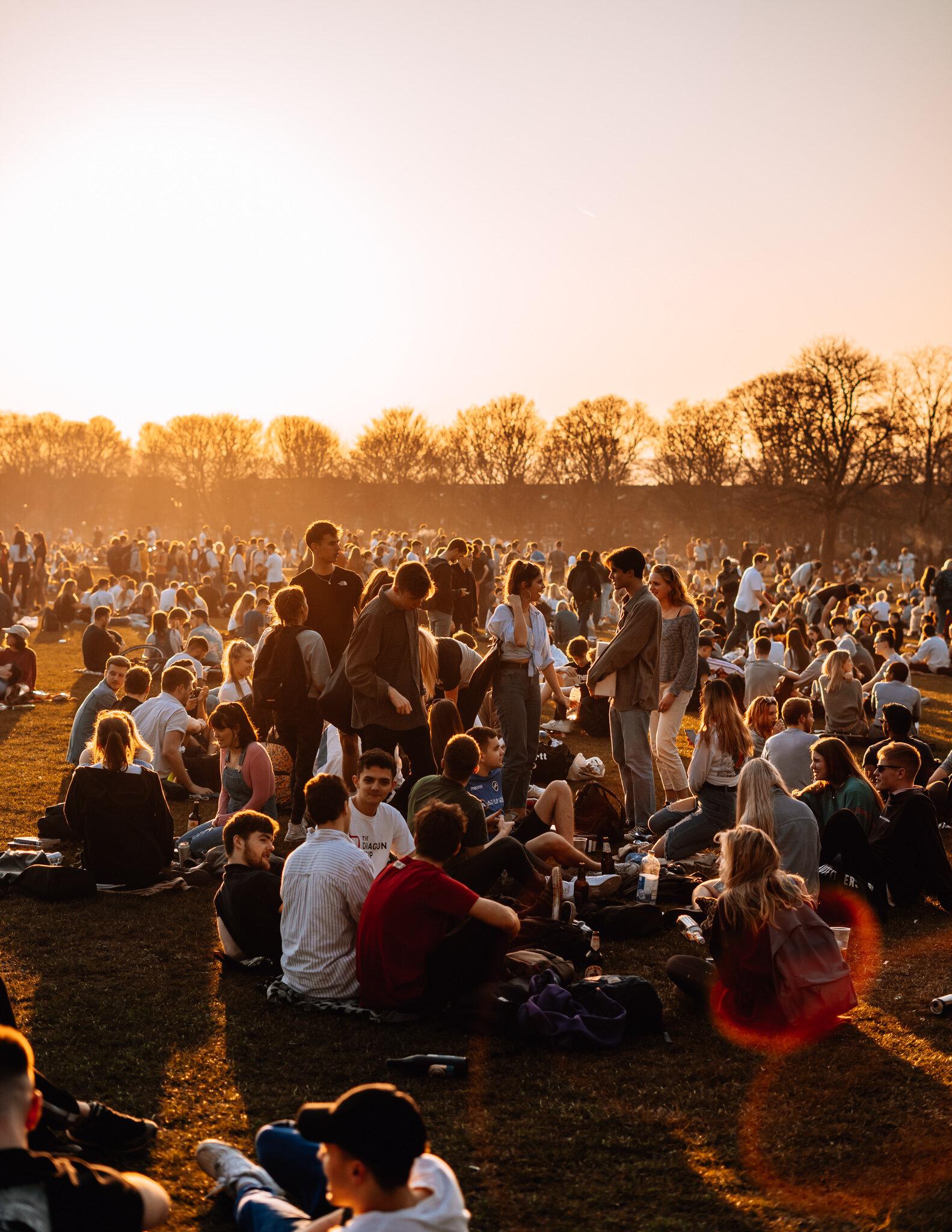 sunny park-4.jpg
