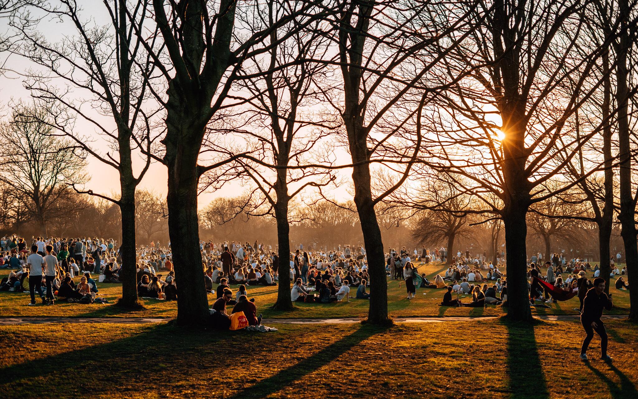 sunny park-1.jpg