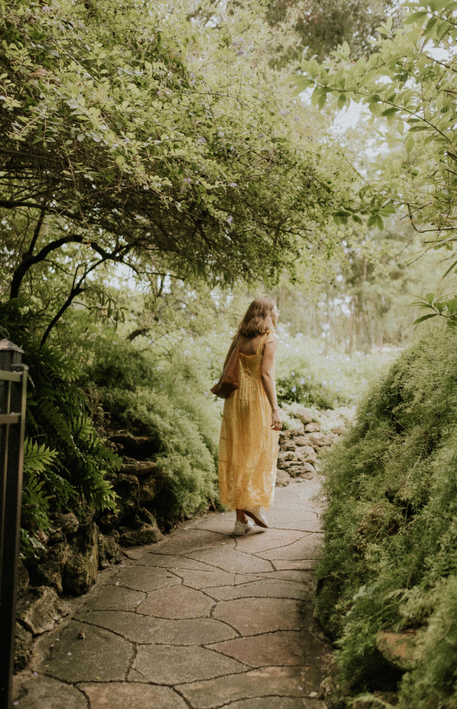 Sunken Gardens - Chez Nunez