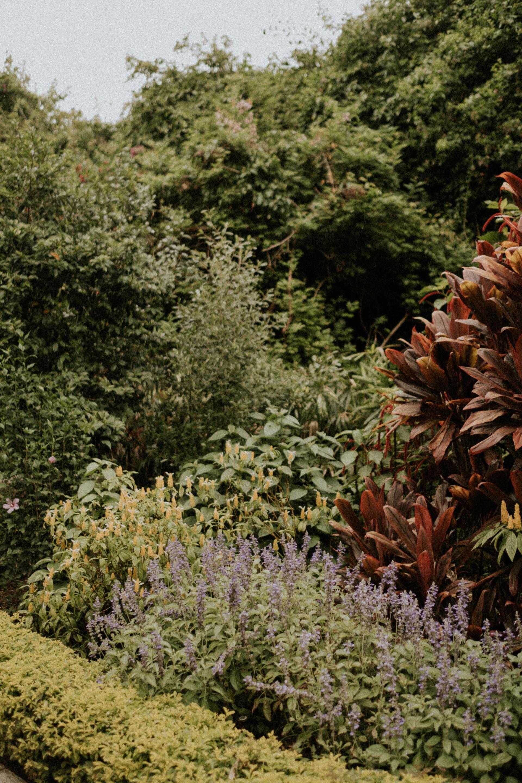 Sunken Gardens St Pete - Chez Nunez