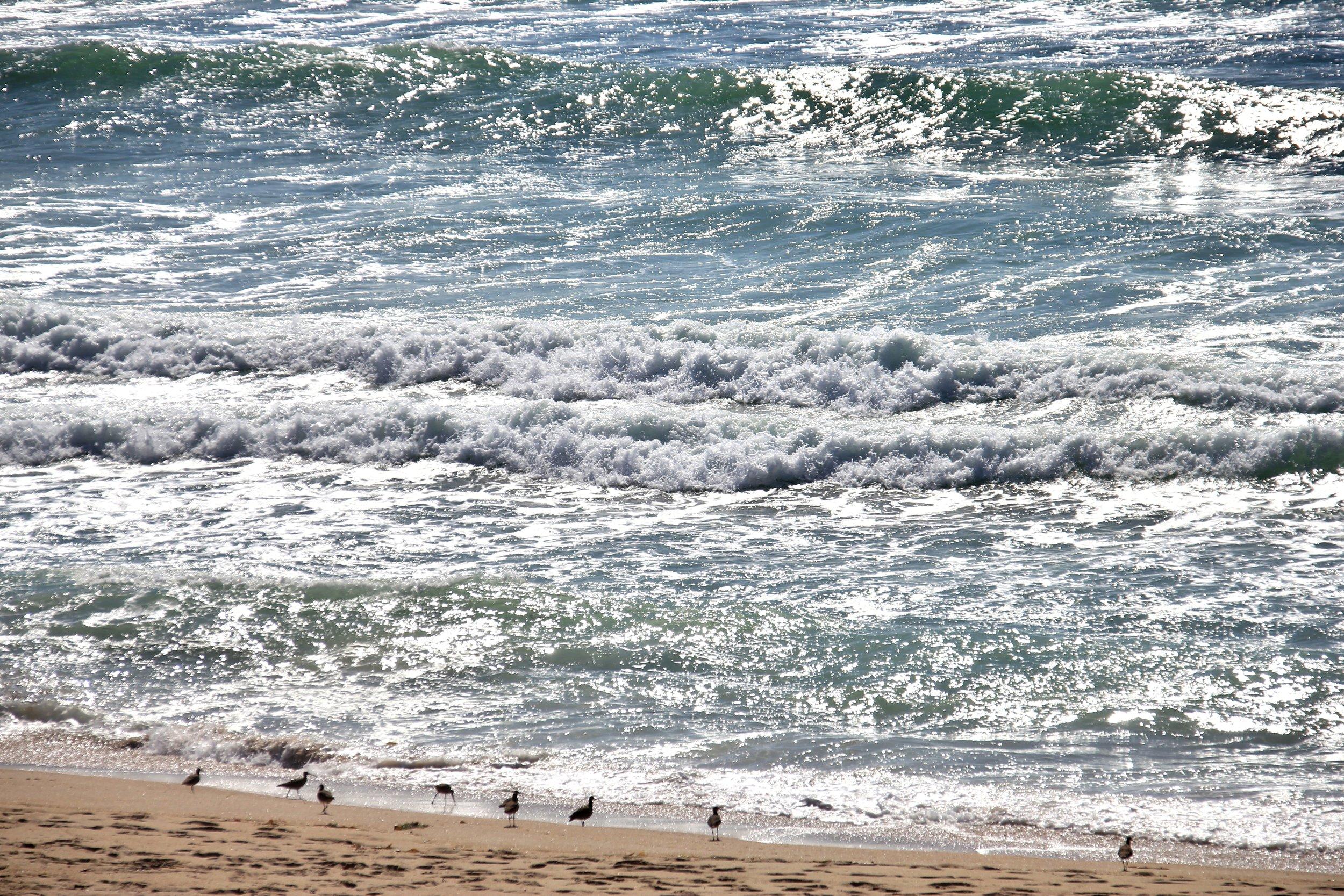 Katzman Beach Day 035.JPG