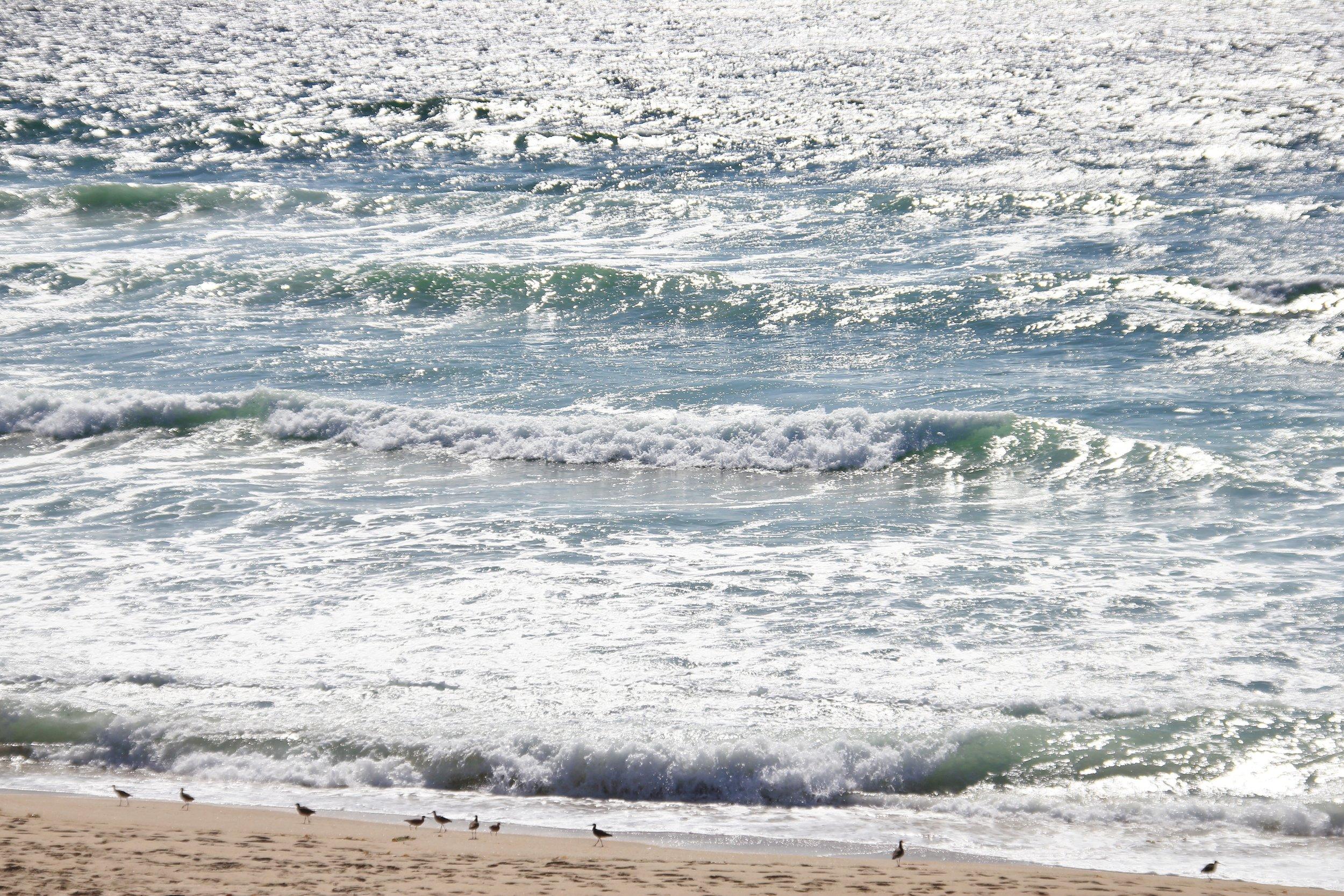Katzman Beach Day 037.JPG