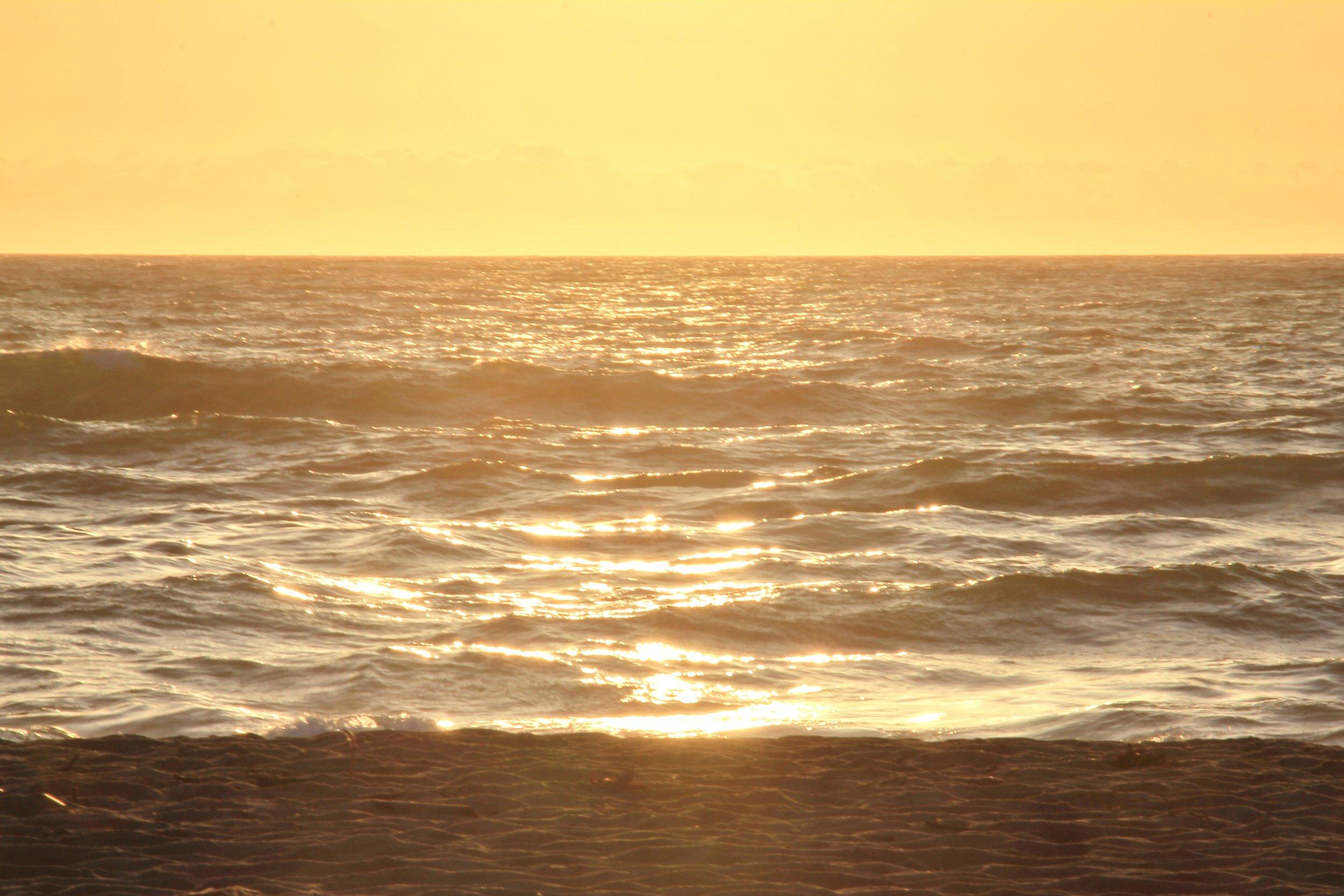 Katzman Beach Day 221.JPG