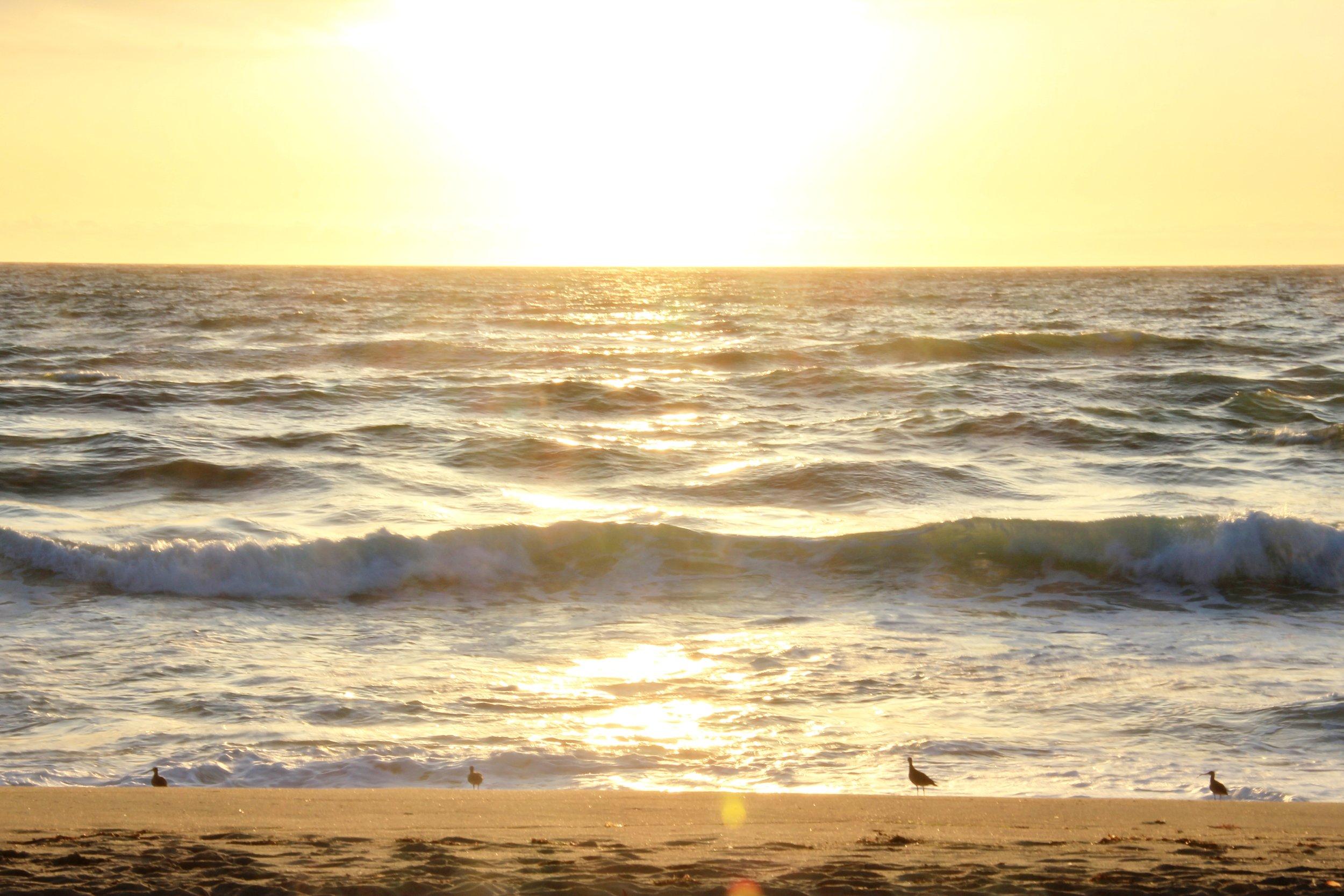 Katzman Beach Day 224.JPG