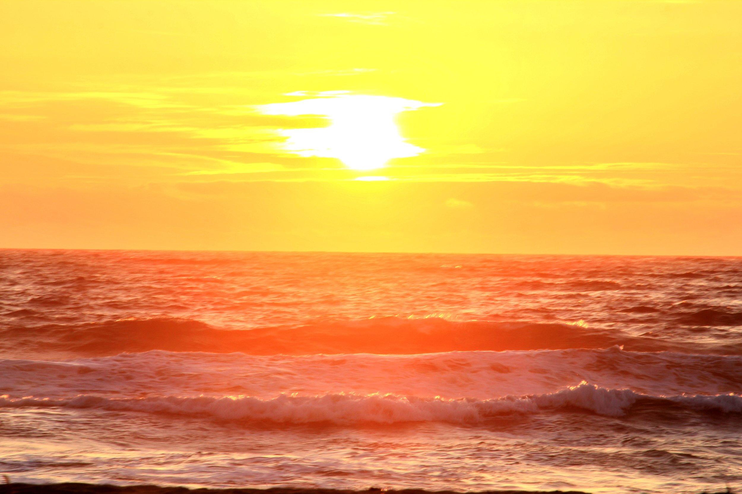 Katzman Beach Day 291.JPG