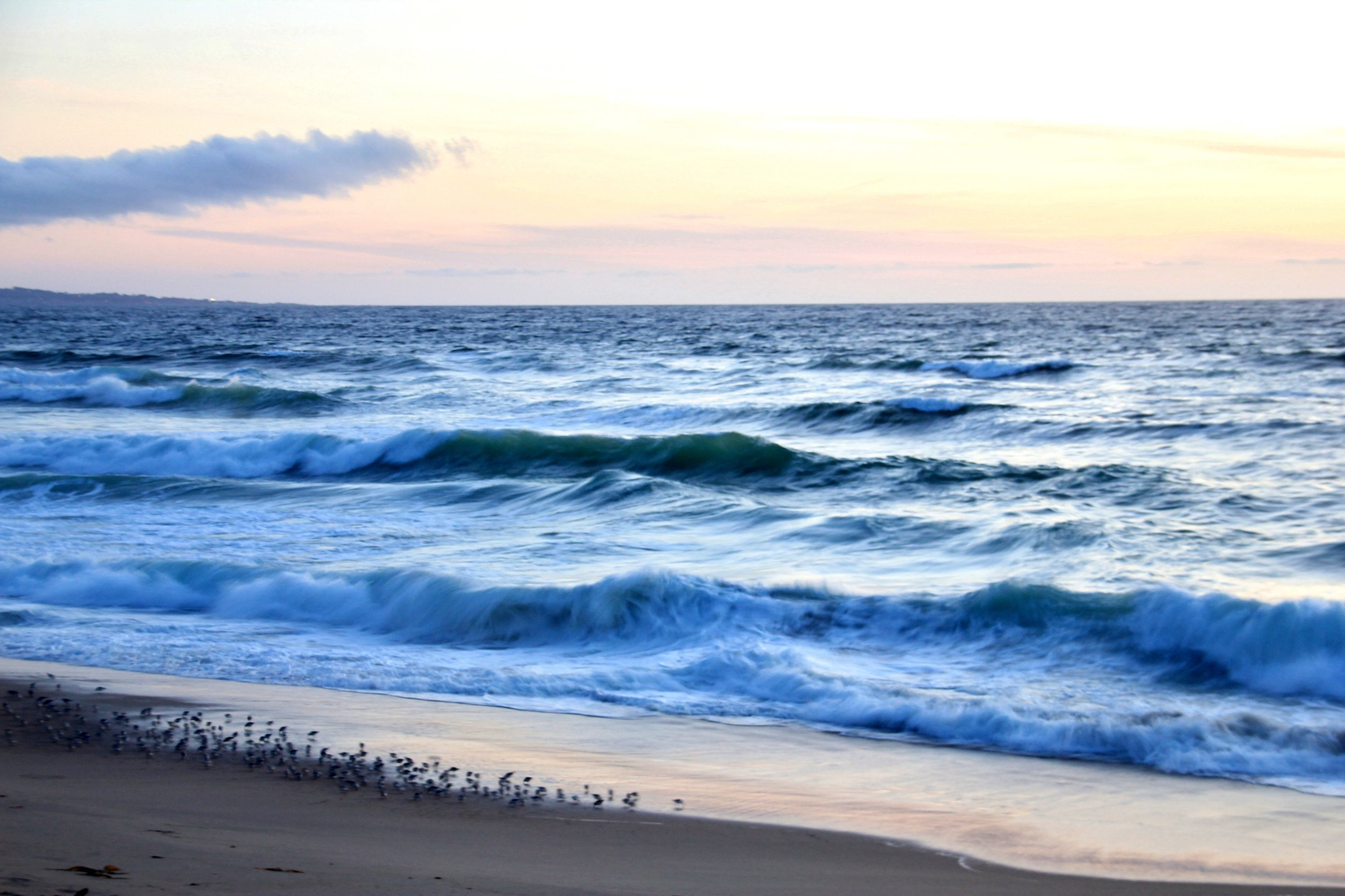 Katzman Beach Day 388.JPG