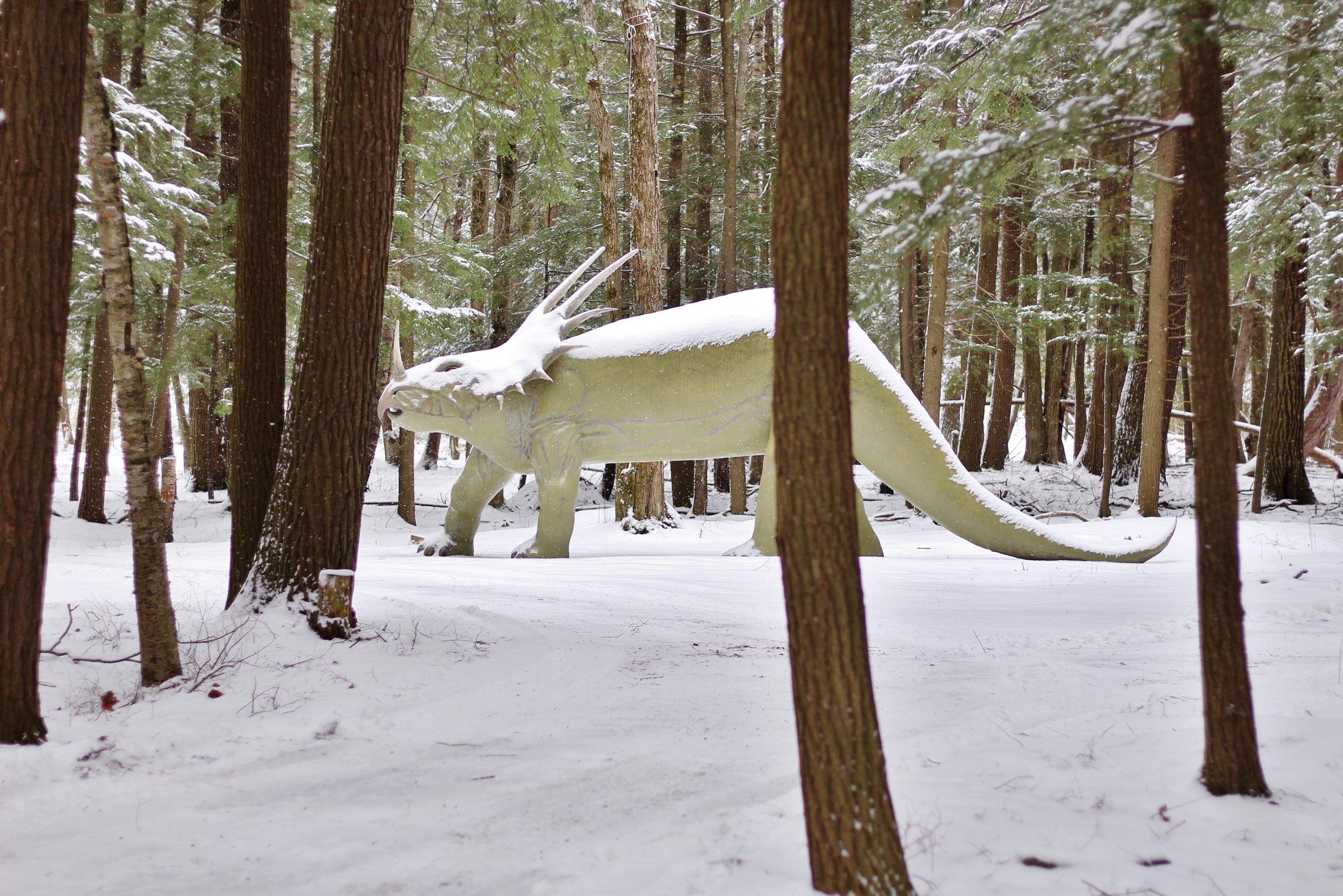 Dinosaur Gardens in the Snow (13).JPG