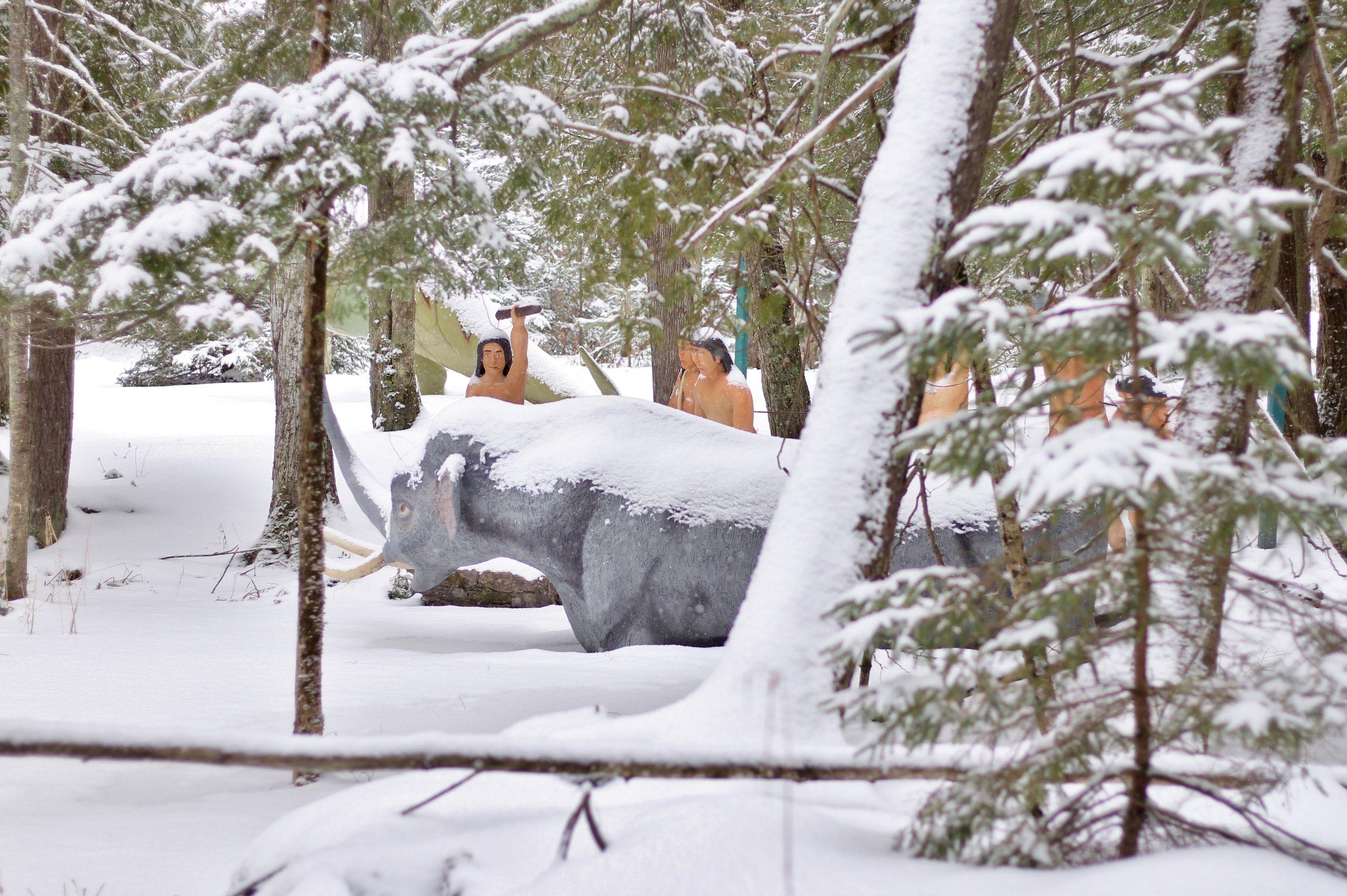 Dinosaur Gardens in the Snow (4).JPG