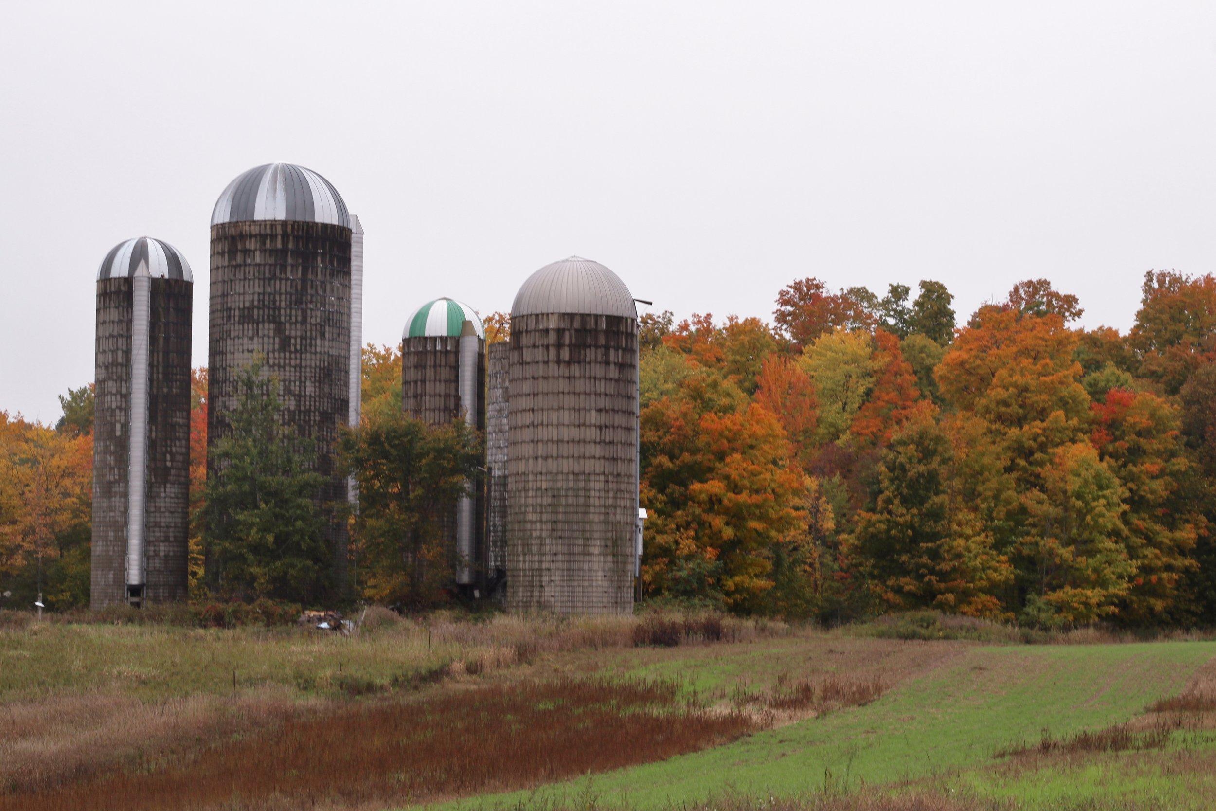 Beth's Family Farm (35).JPG