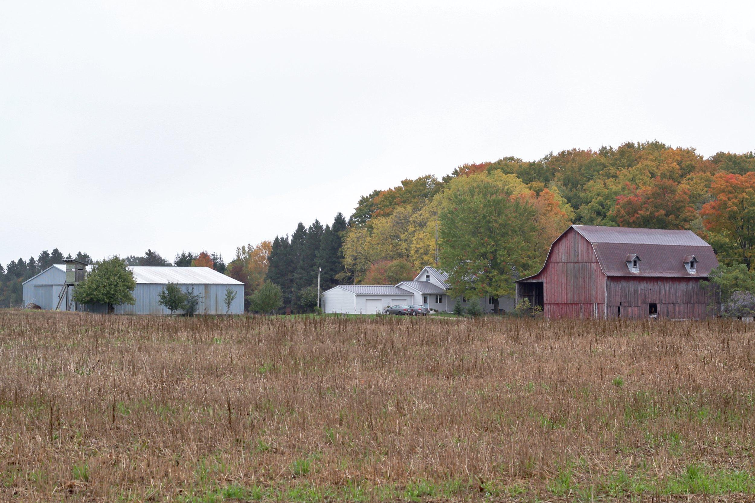 Beth's Family Farm (58).JPG