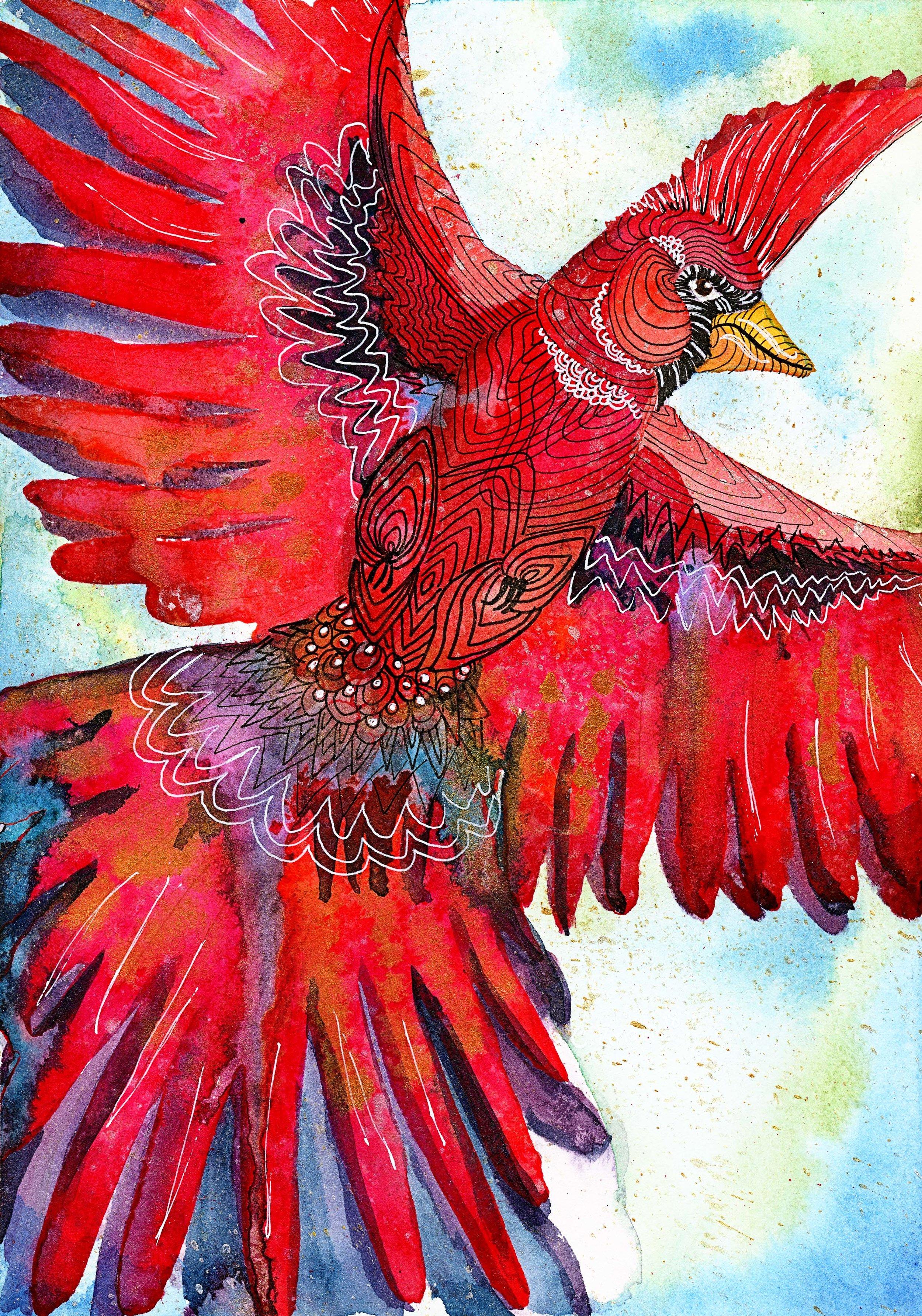 cardinalflightw.jpg
