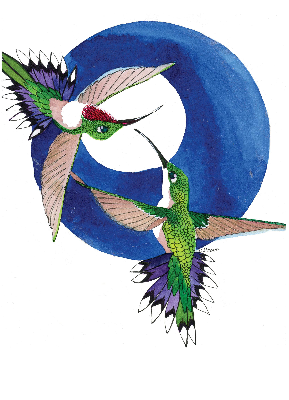 hummingflight-catprint.png