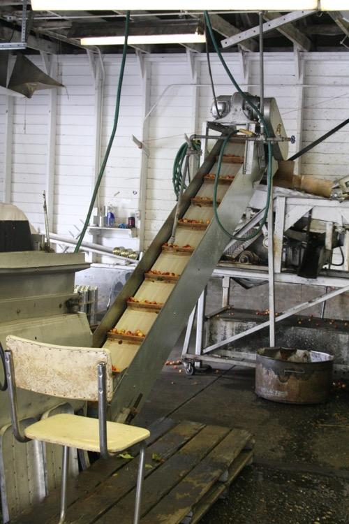 conveyor.JPG.jpg