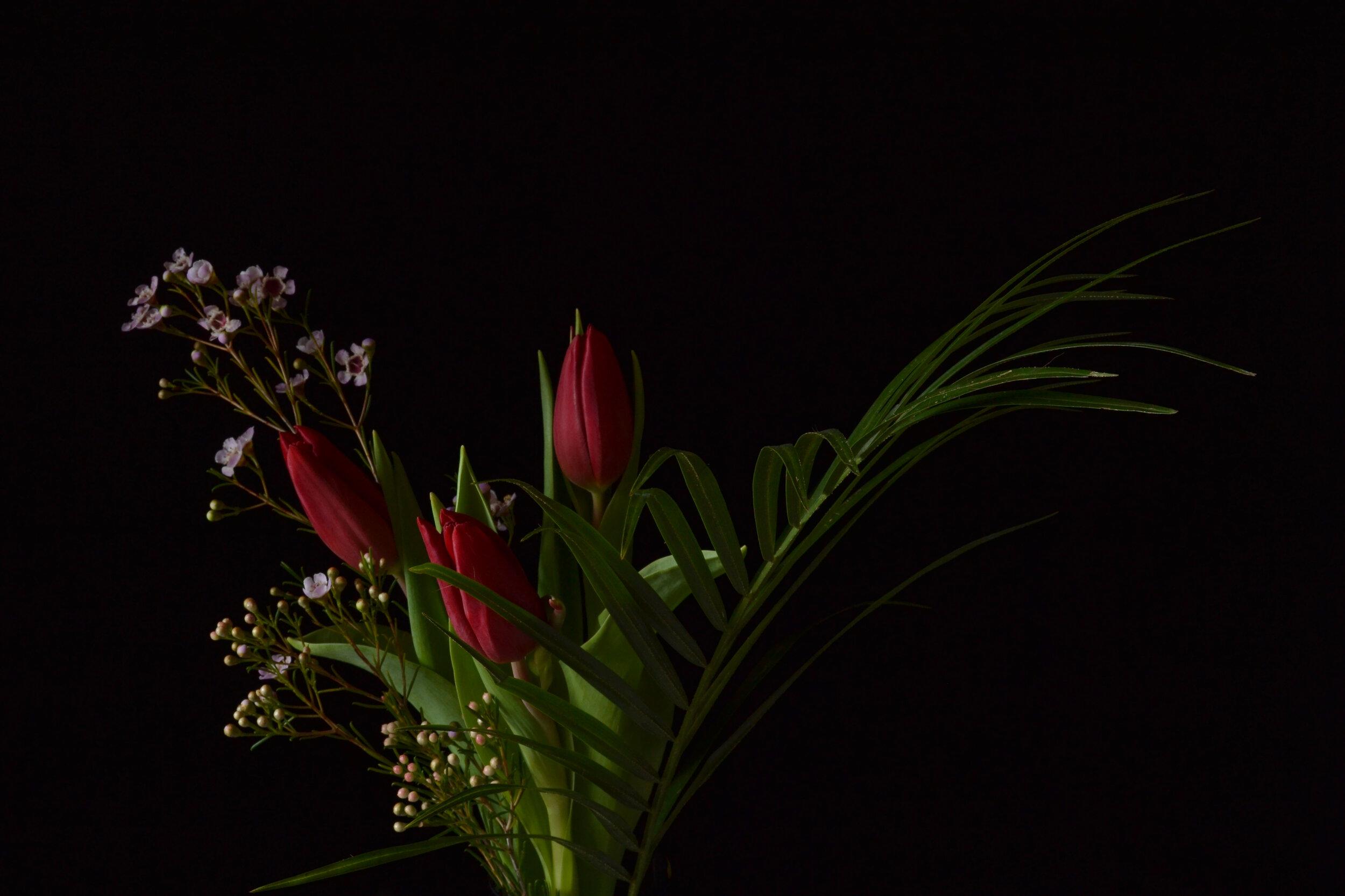 Flowers7 copy.jpg