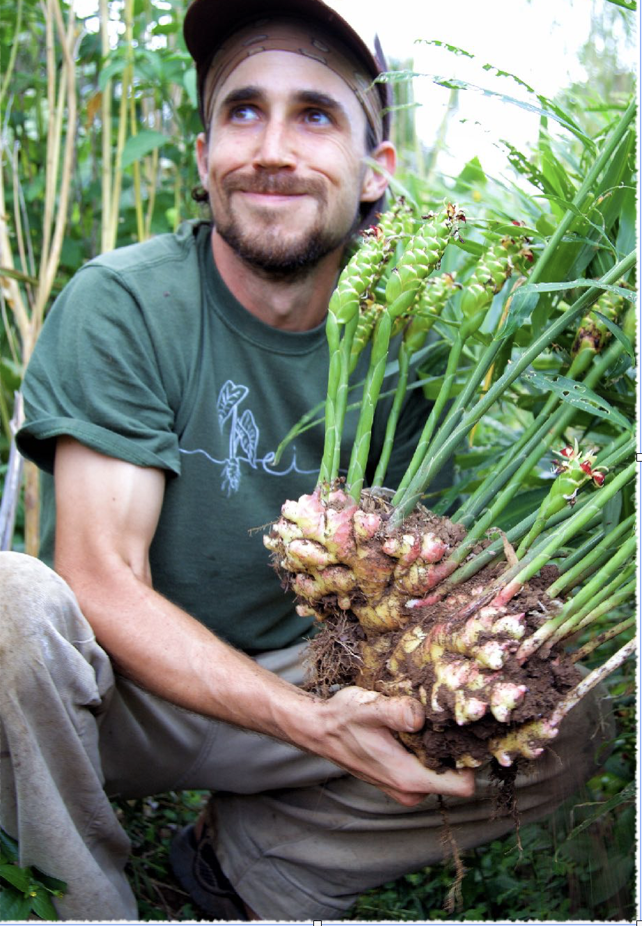 """Travis Dodson, 29- USA - Vision: To co-create a functional farm and living classroom to educate and inspire individuals from around the globe.""""I am passionate in cultivating a dynamic multi sensory natural learning environment that returns humanity to the wonder filled state of our foraging ancestors. My vision is to cultivate resiliency, diversity and abundance in a regenerative agroforestry system that restores the land while benefiting humans and the local ecology.With hyper diverse genetic material, we will be preserving plant genetics and installing them in a system with the potential for a legacy life span allowing the plants to naturalize and spread organically like a forest.""""For the past 4 years Travis has been living and working with Vanessa to grow our """"living classroom"""" and visionary farm/ campus on the Big Island Hawaii."""