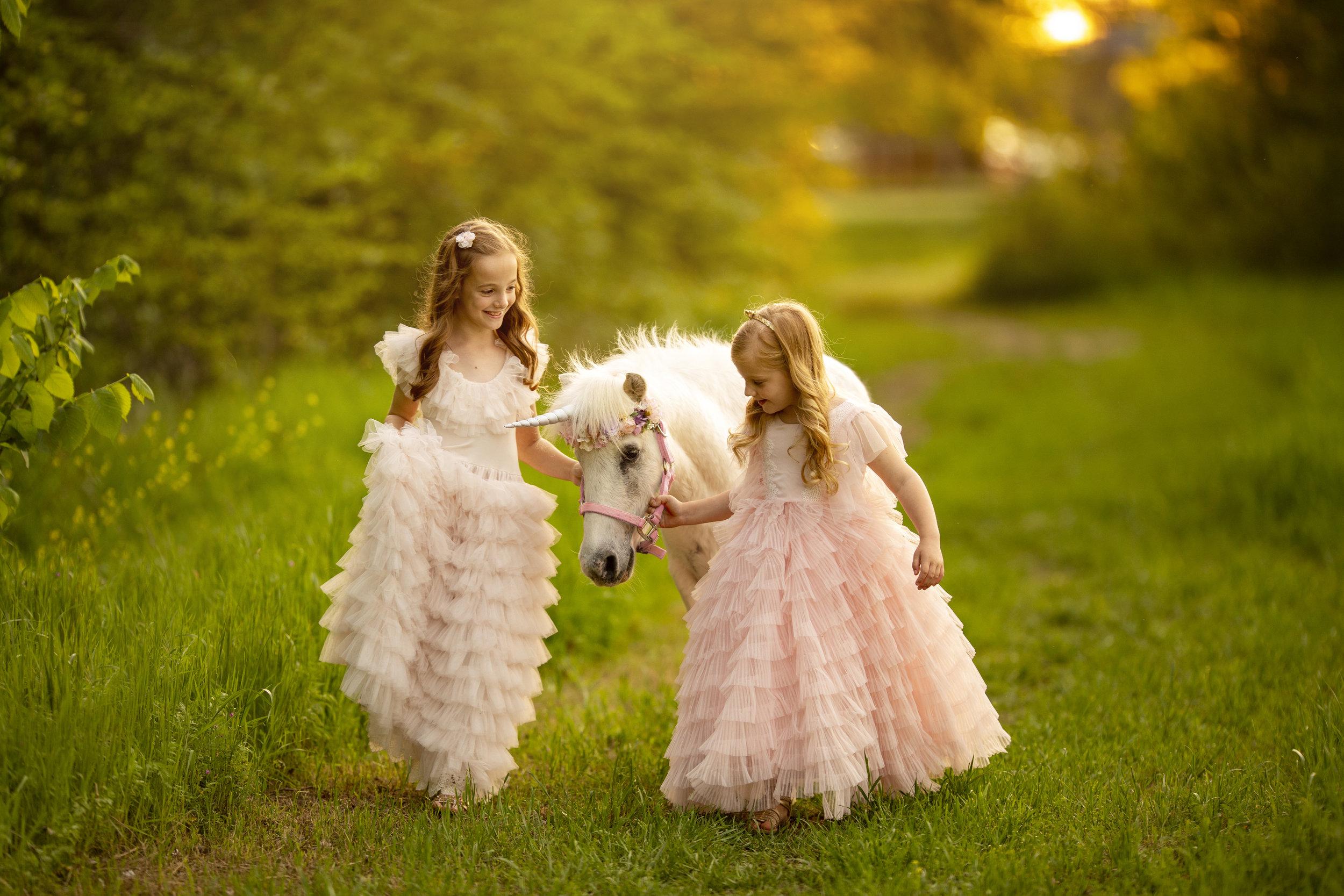 Little unicorn mini 04102019  (2).jpg