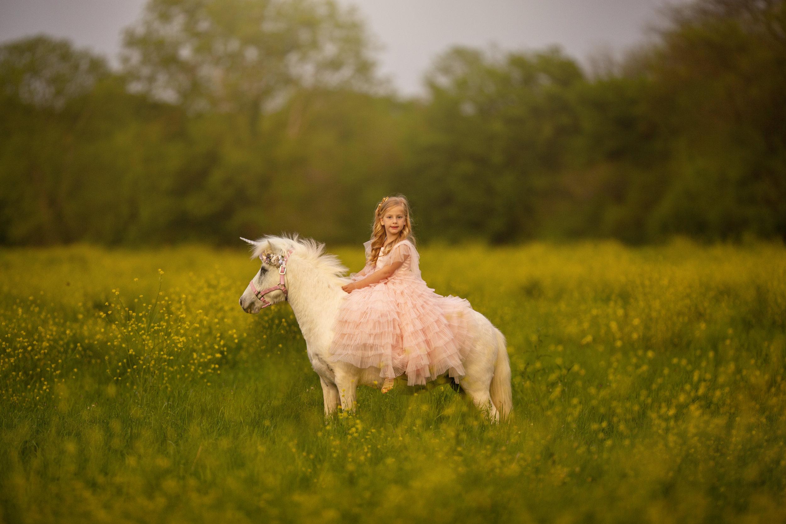 Little unicorn mini 04102019  (16).jpg