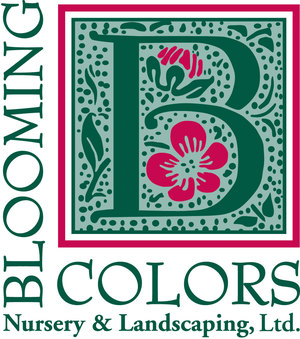 Blooming Colors - Blooming Colors Nursery & Landscaping is family owned and operated. Founder & Owner Barry Johnson lives and resides in the Dallas/Fort Worth Metroplex and is a Master Certified Nursery Professional and a Texas Registered Professional Engineer. When he opened Blooming Colors Nursery & Landscaping in 1994, he combined his passion for landscaping with his engineering background. Today, Blooming Colors Nursery is one of the largest in the area due to the high quality products and services it provides to its customers.